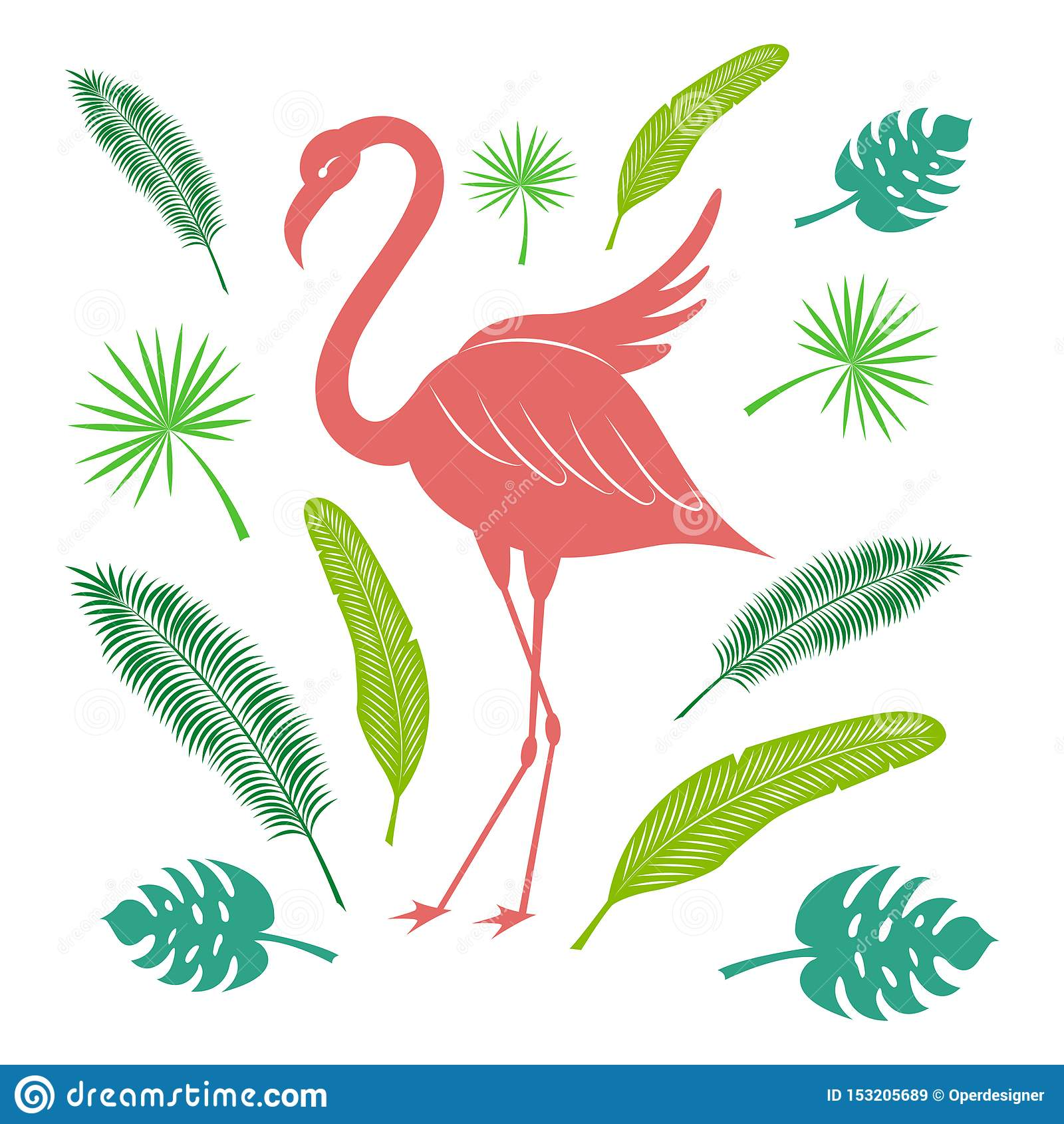 Flamingo and tropical leaves of palm and banana. Bright summer set. Stylized vector illustration.