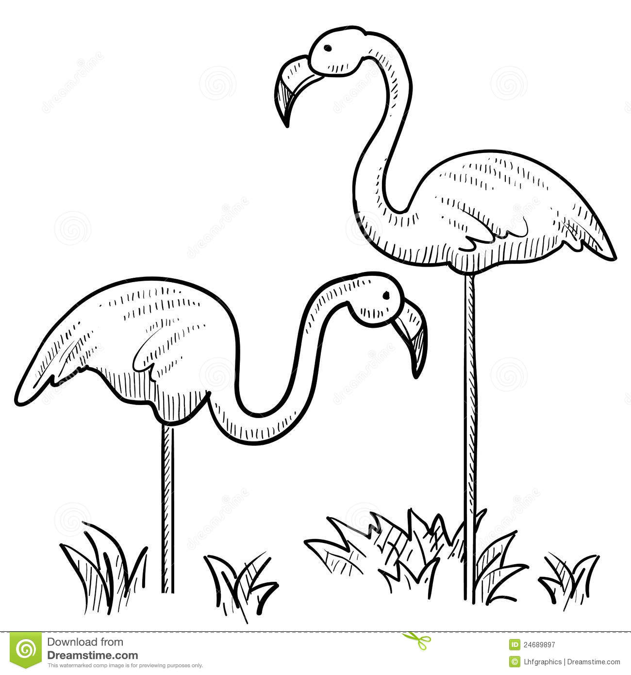 Doodle Style Sketch Of Two Flamingo Birds Standing In The Grass