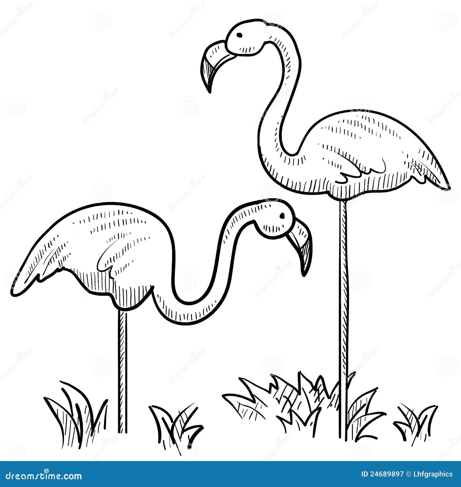 Flamingo Vector Royalty Free Stock Photography Image