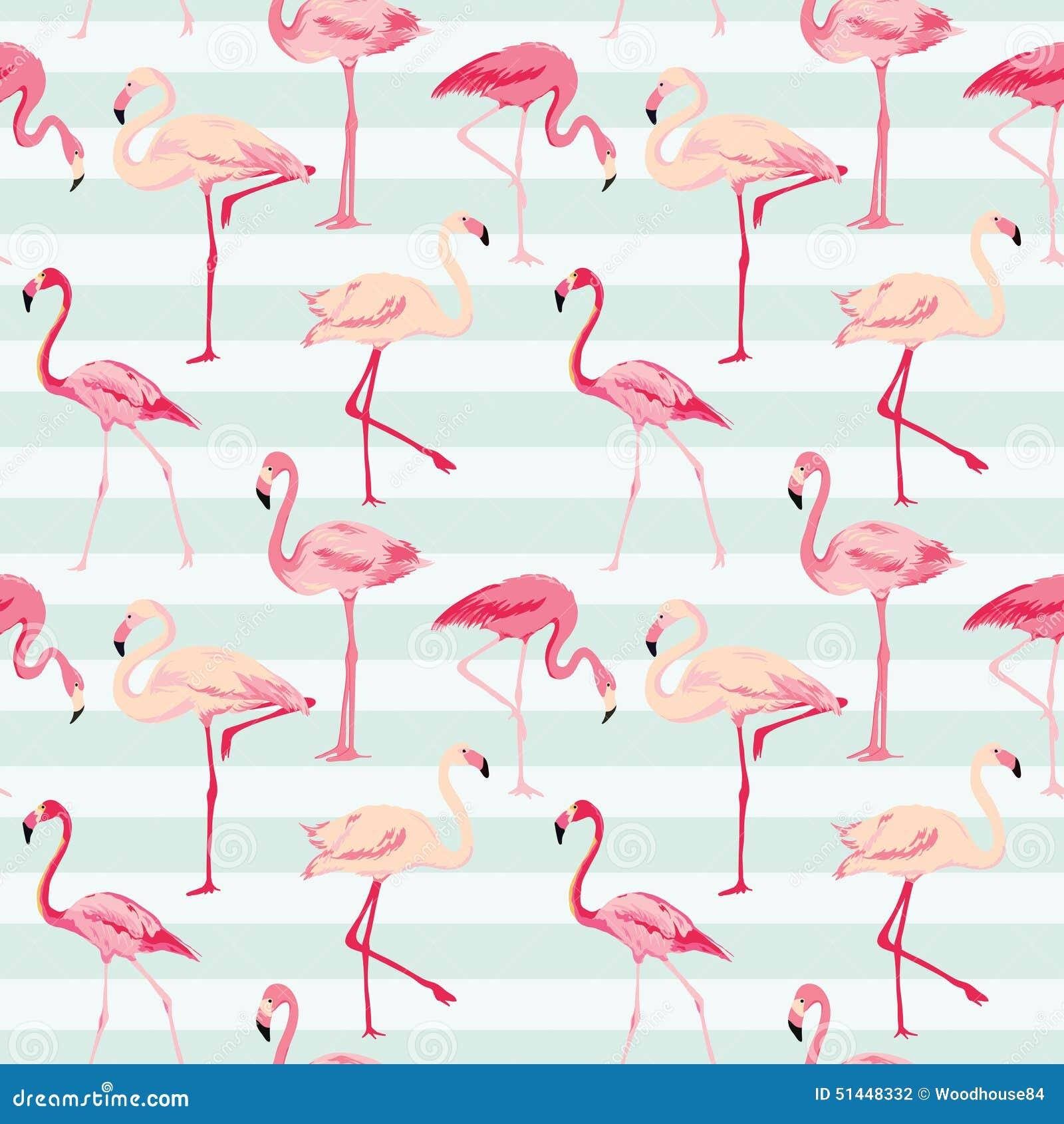 Flamingo-Vogel-Hintergrund Vektor Abbildung - Bild: 51448332