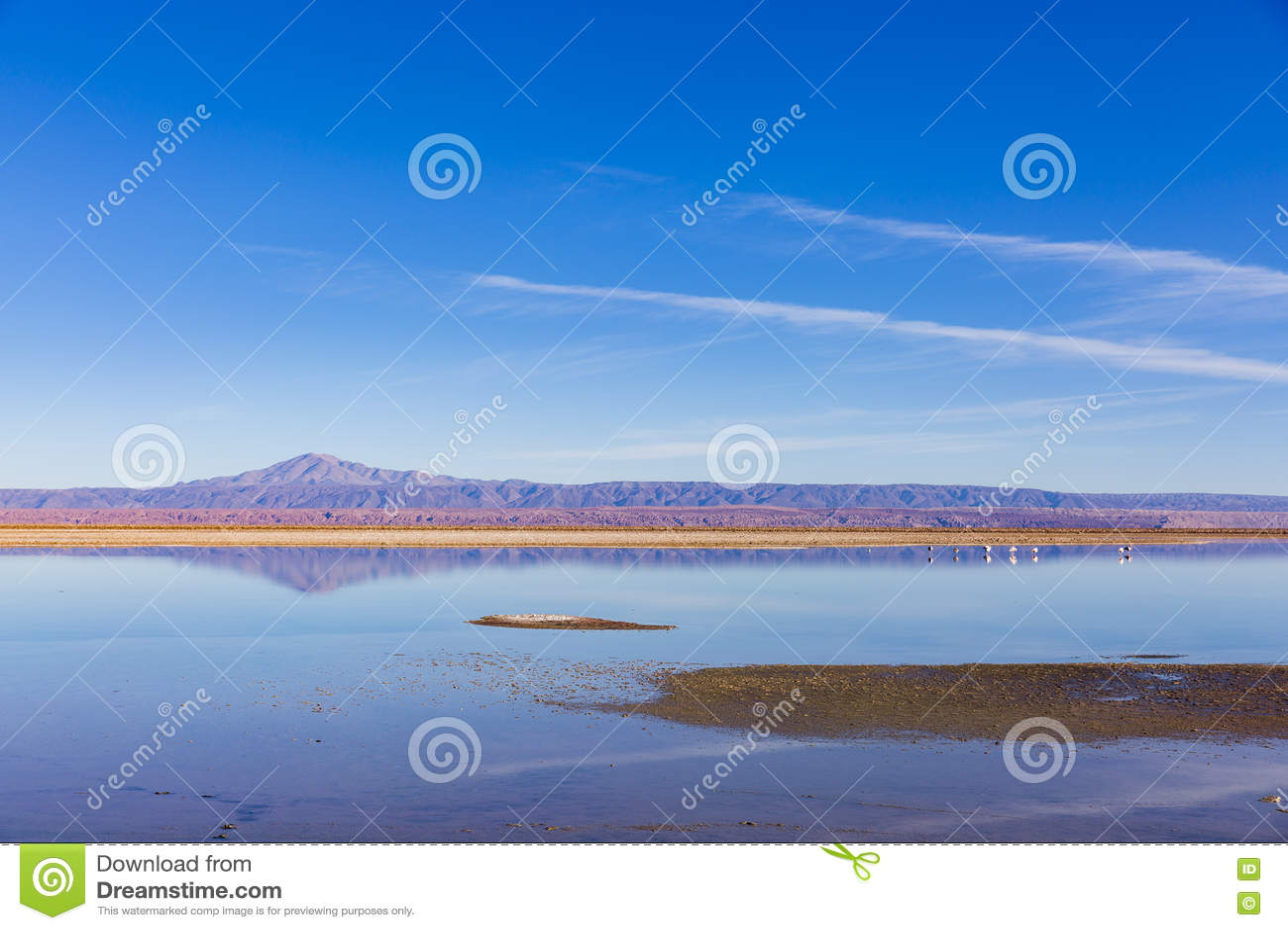 Flamingos, See, Farben und entfernte Berge im Los-Flamenco-national Reserve