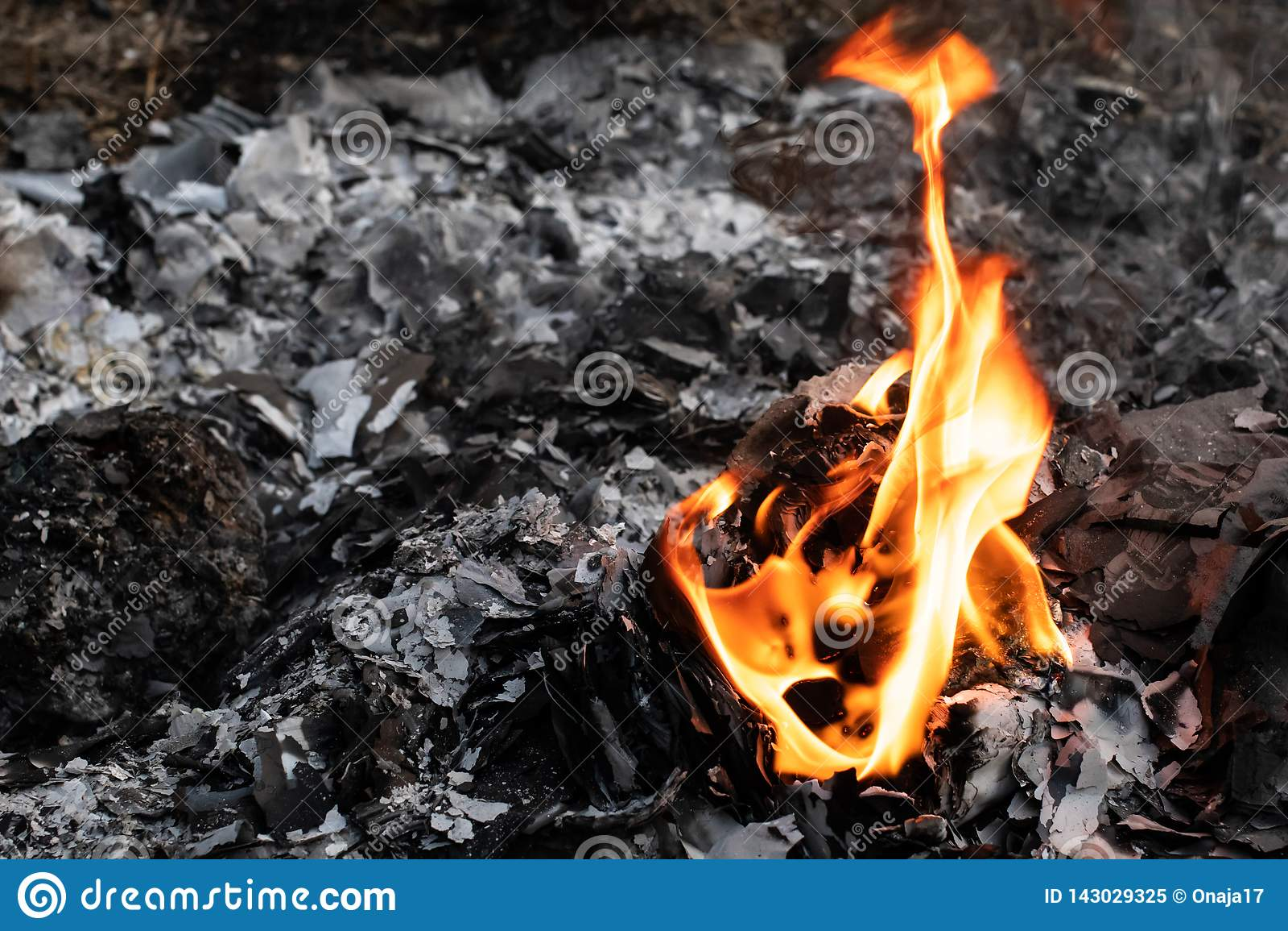 Flamme d incinération des déchets