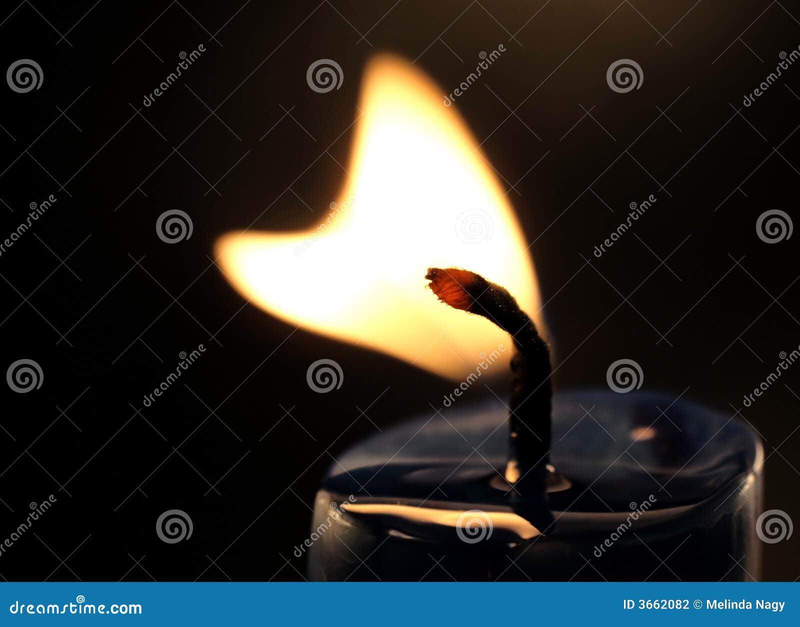 flamme de bougie en forme de coeur photo stock image du peine harmonie 3662082. Black Bedroom Furniture Sets. Home Design Ideas