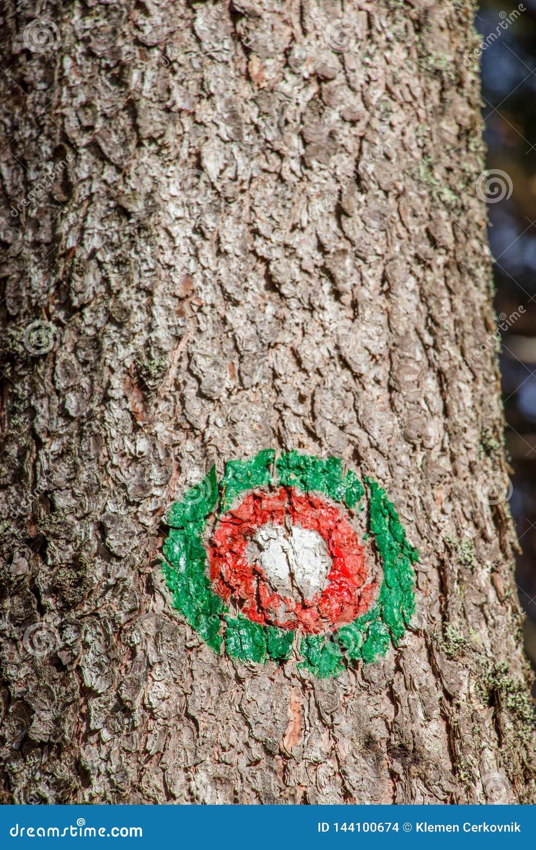 Flamme rouge verte sur l arbre