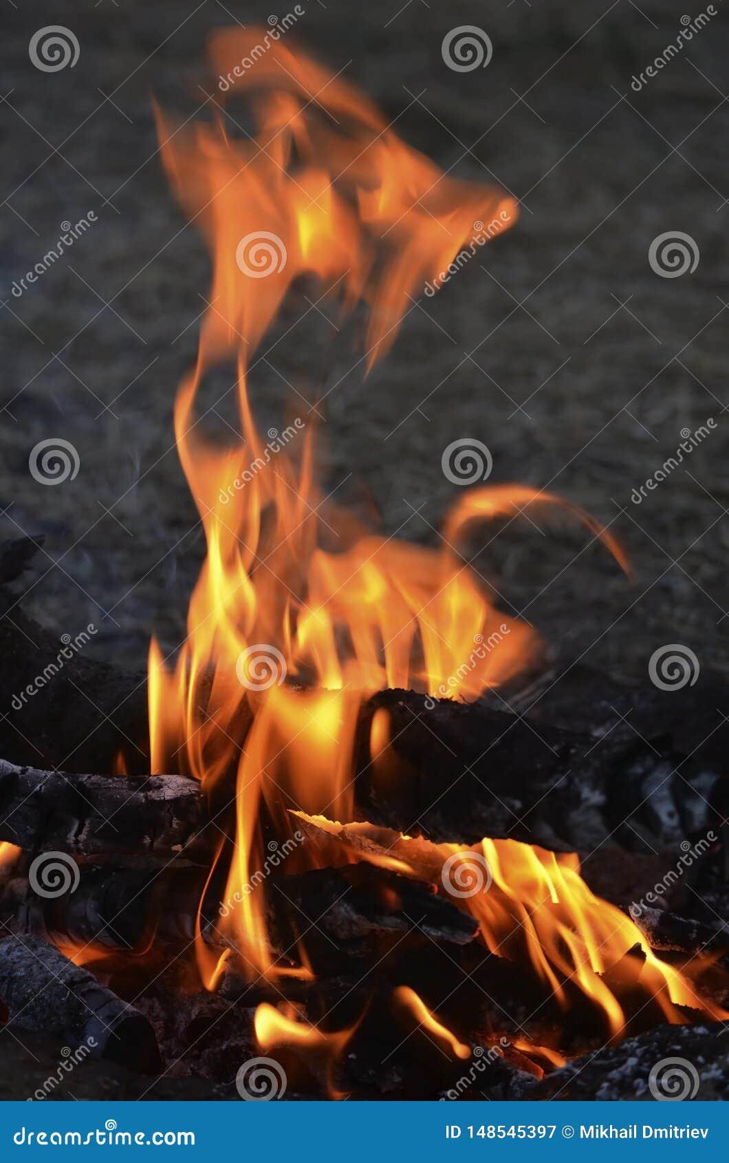 Flammes d ?galiser le feu grand