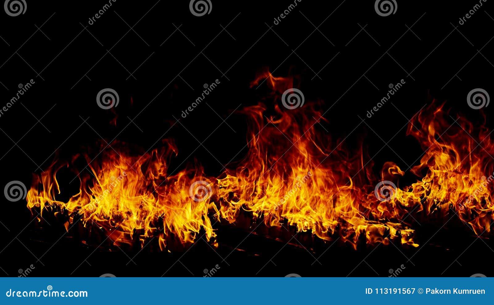 Flammes du feu sur un noir