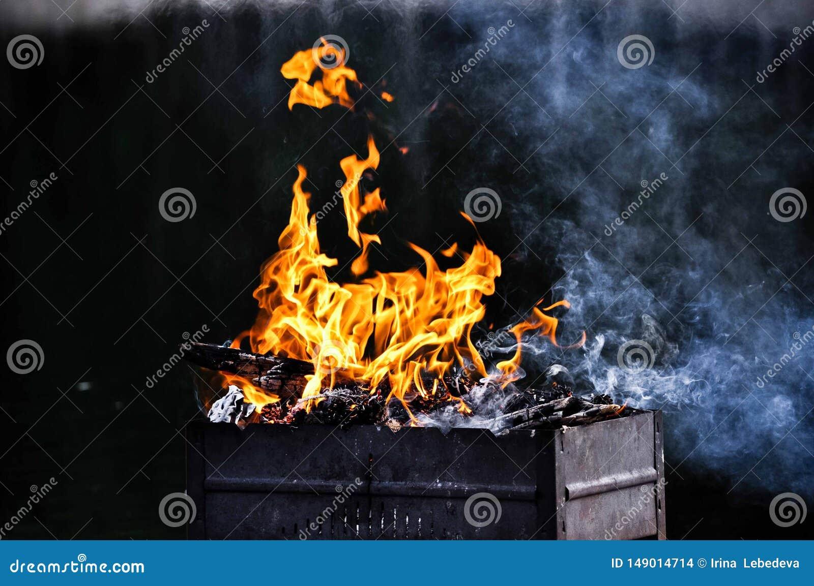 Flammor av brand i ett galler från ett träd under en klar sommarhimmel