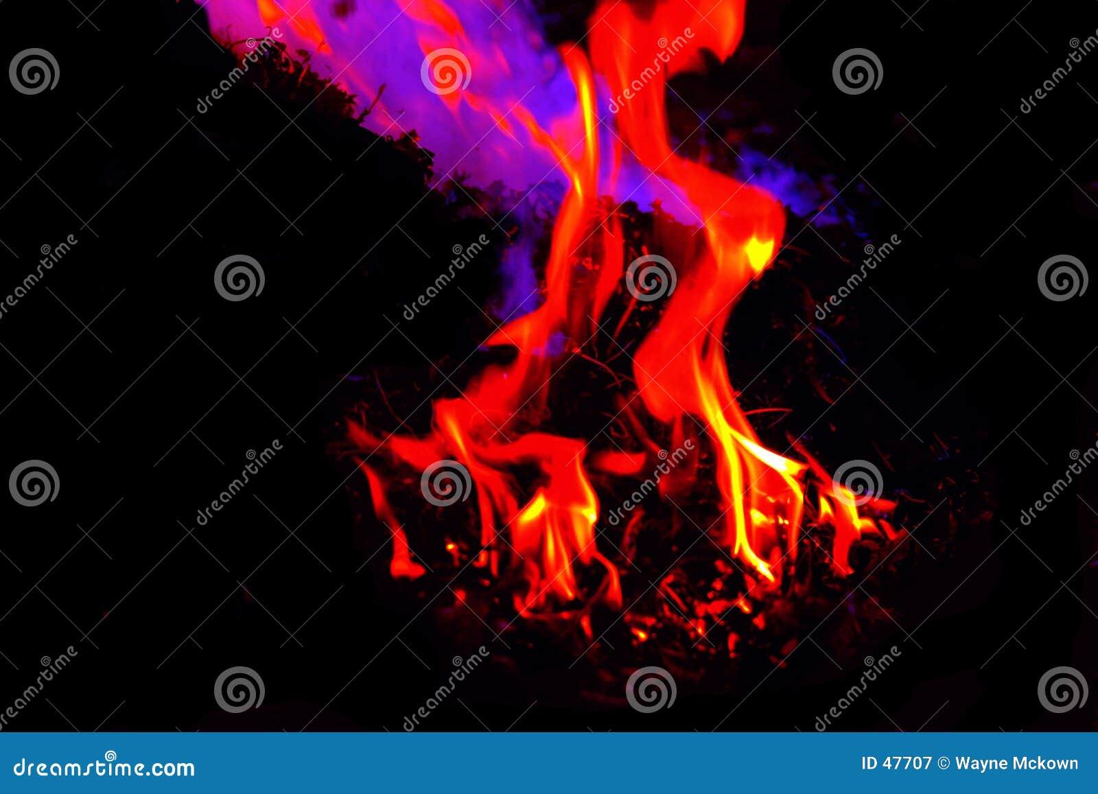 Flammt #2