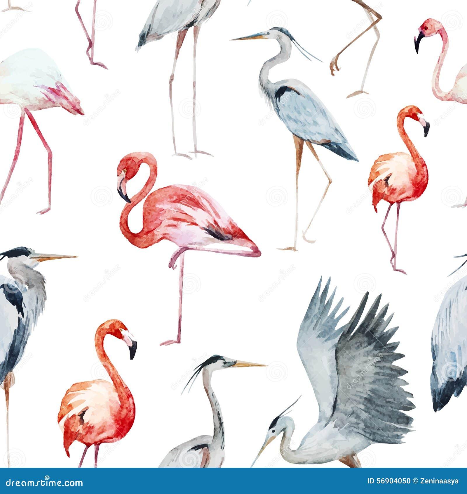 Flamngo and heron pattern