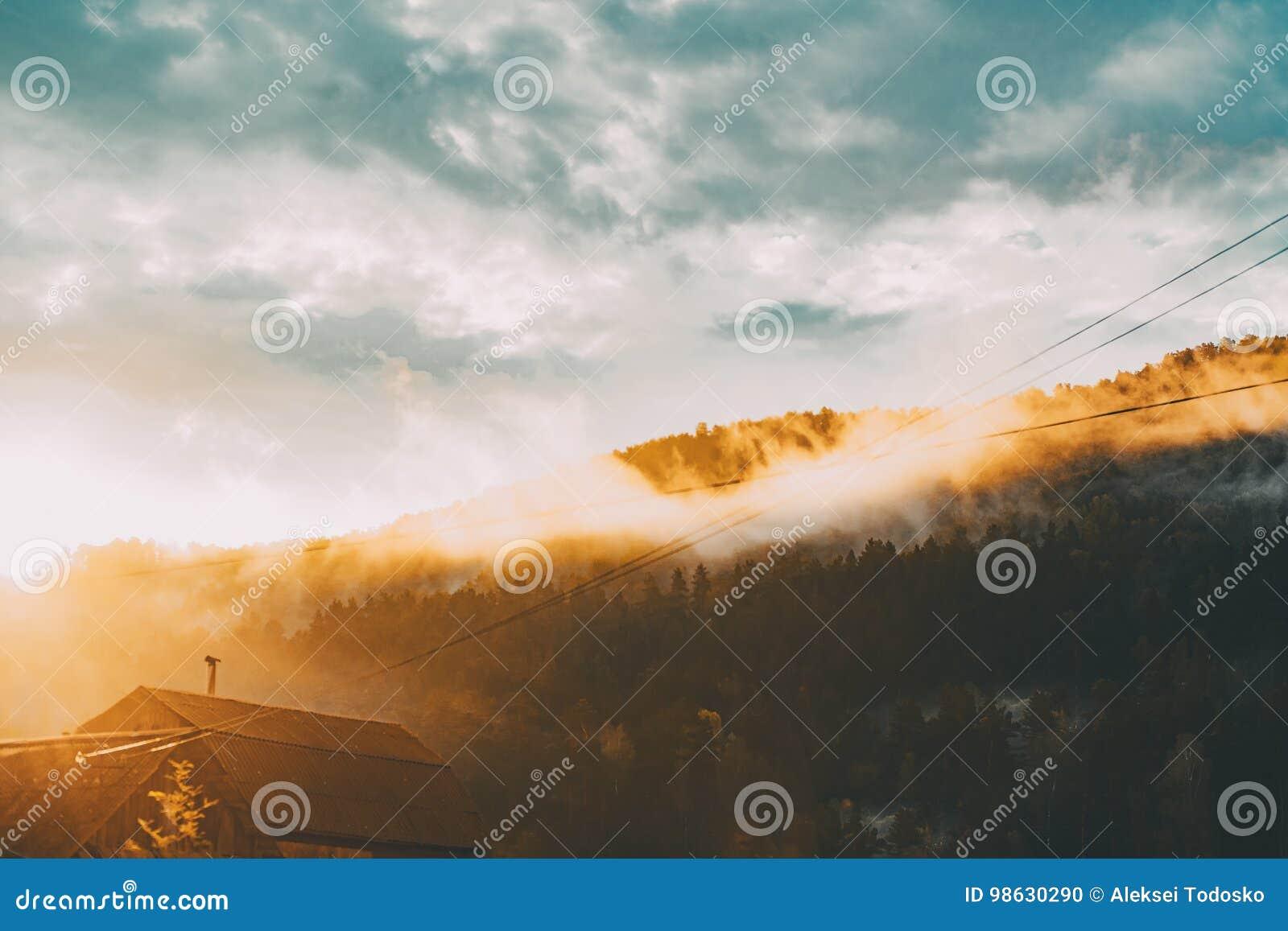 Flanka wzgórze z drewnem zaświecał słońcem