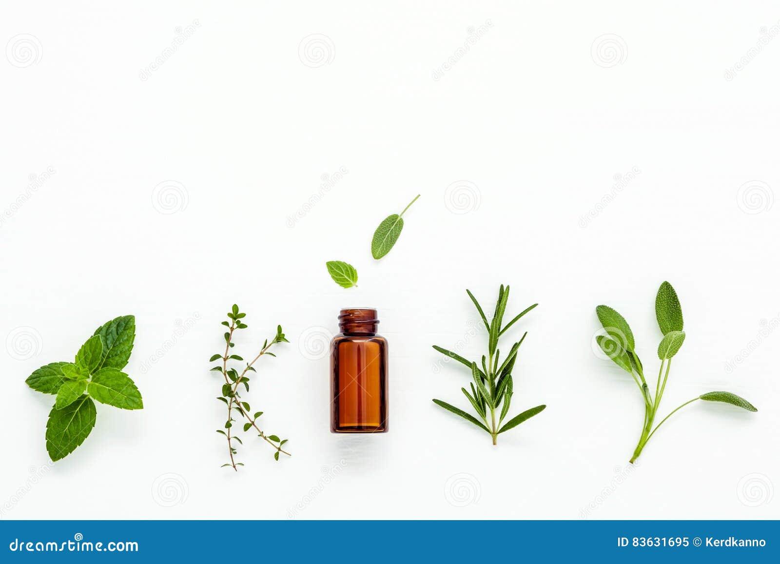 Flasche ätherisches Öl mit frischem Kräutersalbei, Rosmarin, Zitrone