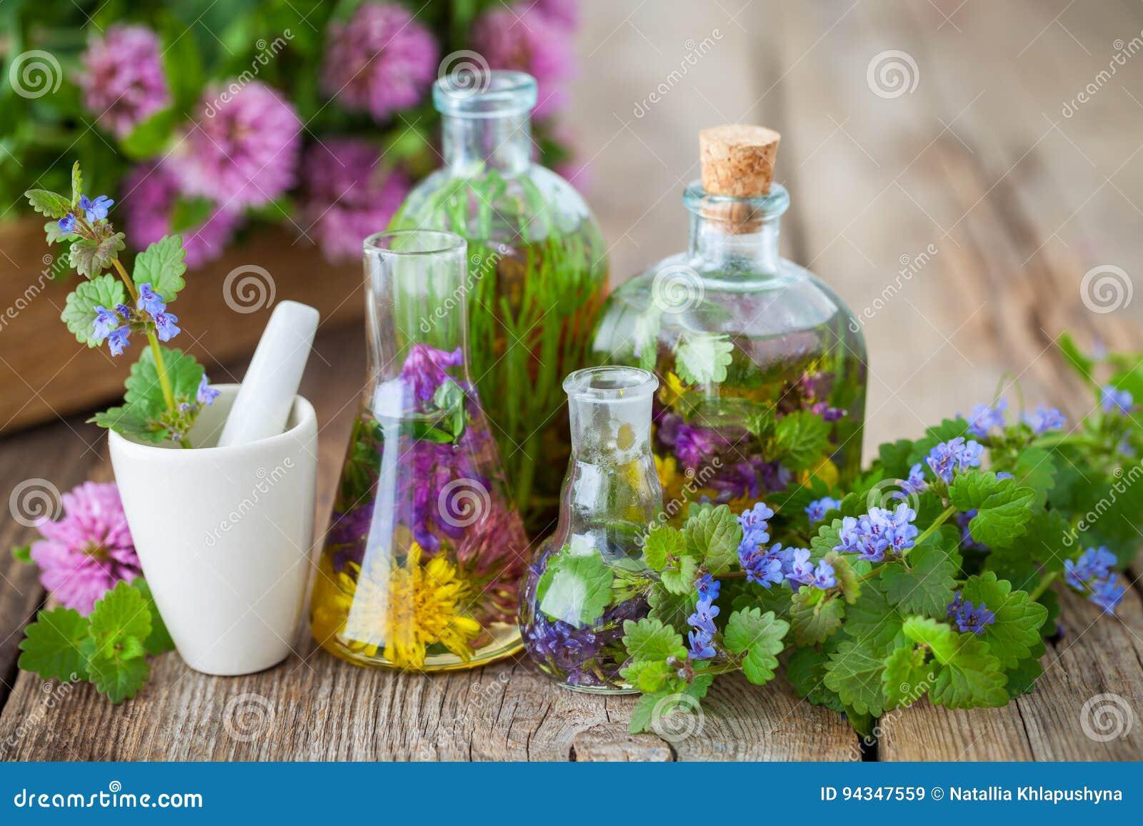 Flaschen der Infusion der gesunden Kräuter, des Mörsers und der Heilpflanzen