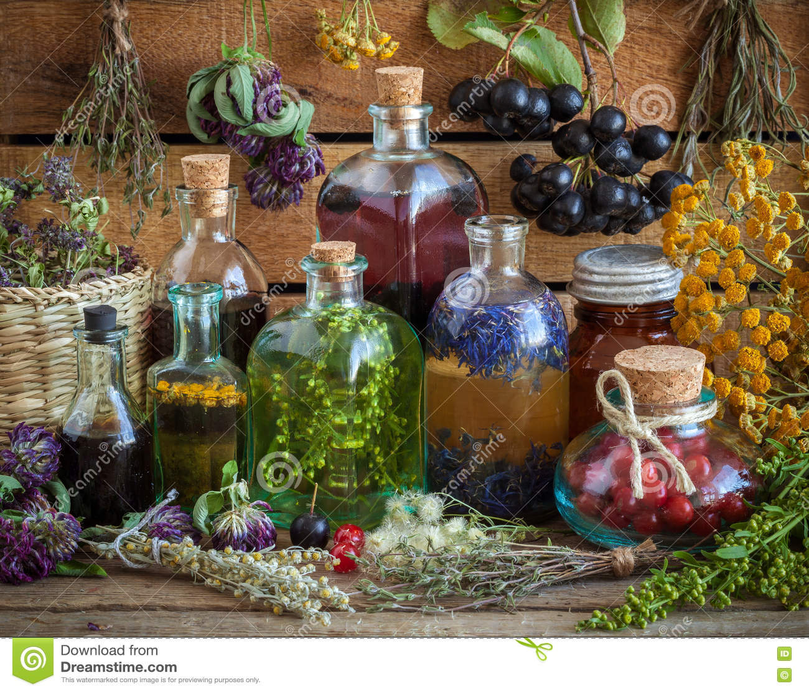 Flaschen Tinktur, Trank, Öl, gesunde Beeren und Kräuter
