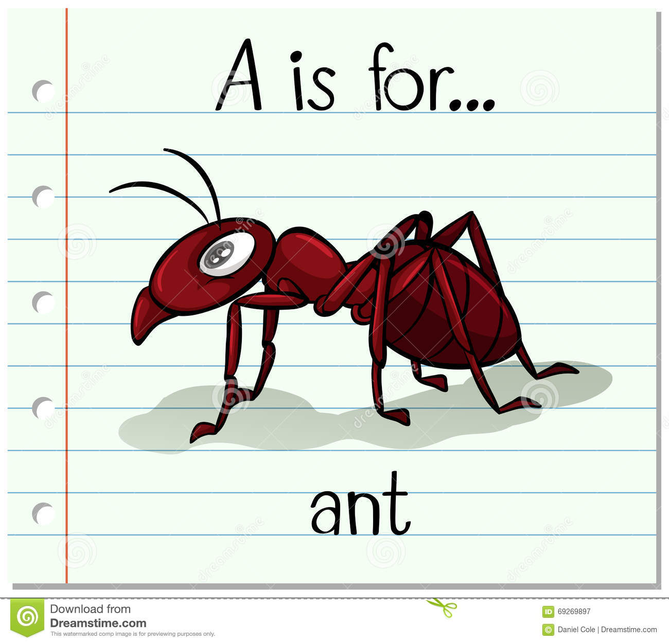 Flashcard Letter A Is For Ant Stock Vector Image 69269897