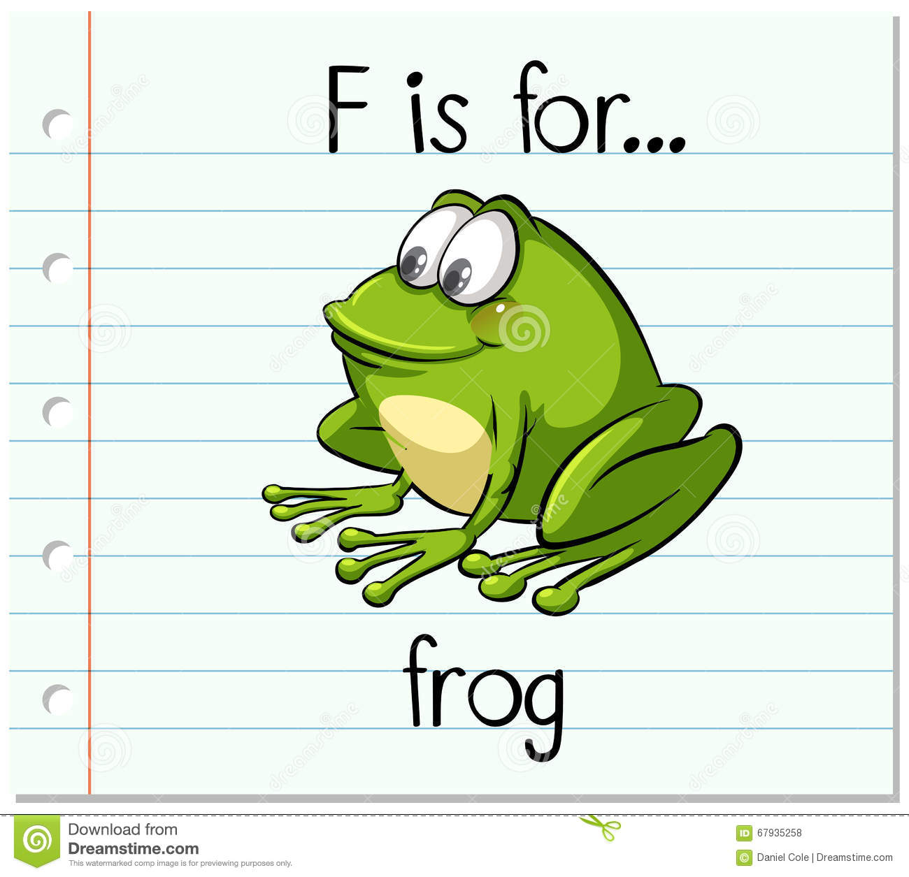 Flashcard Letter F Is For Frog Stock Vector Image 67935258