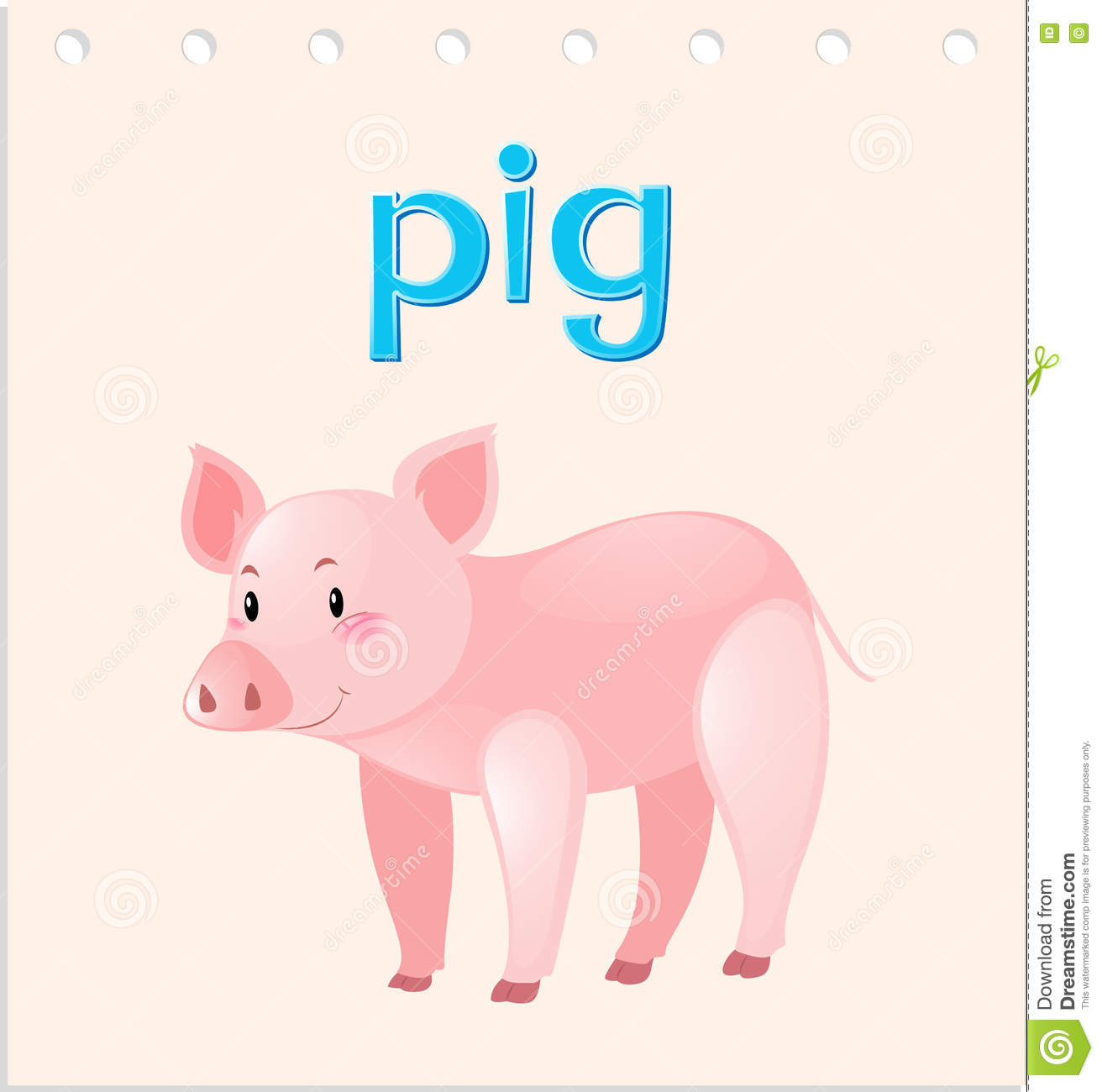 Flashcard With Word And Picture Of Pig Stock Vector