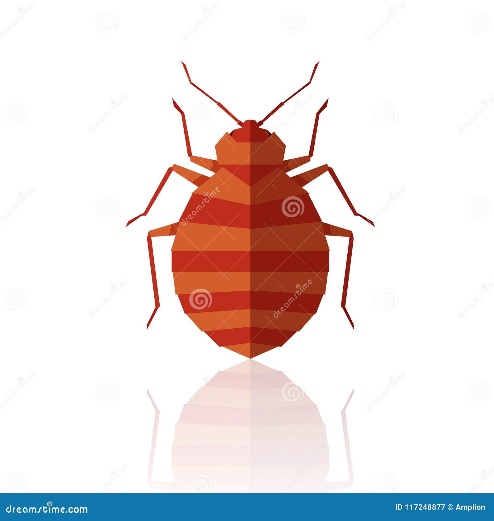 Flat Geometric Bedbug Stock Vector Illustration Of Antennae 117248877
