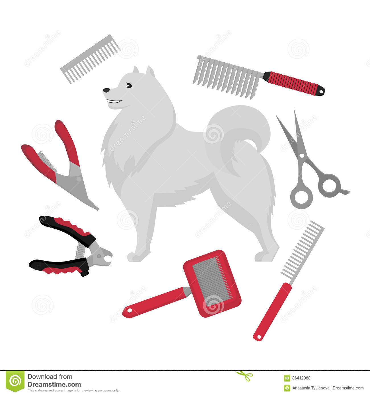 Dog Grooming Salon Equipment