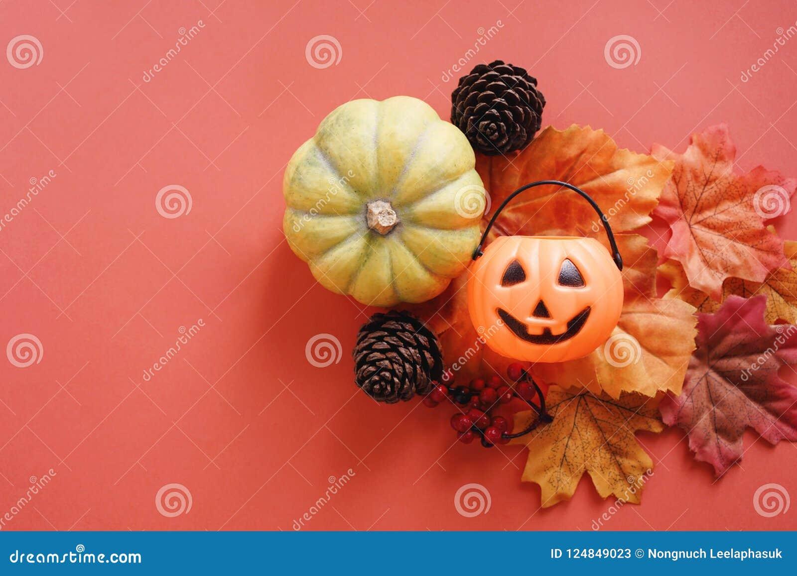 Jack O Lantern Pumpkin Leaves