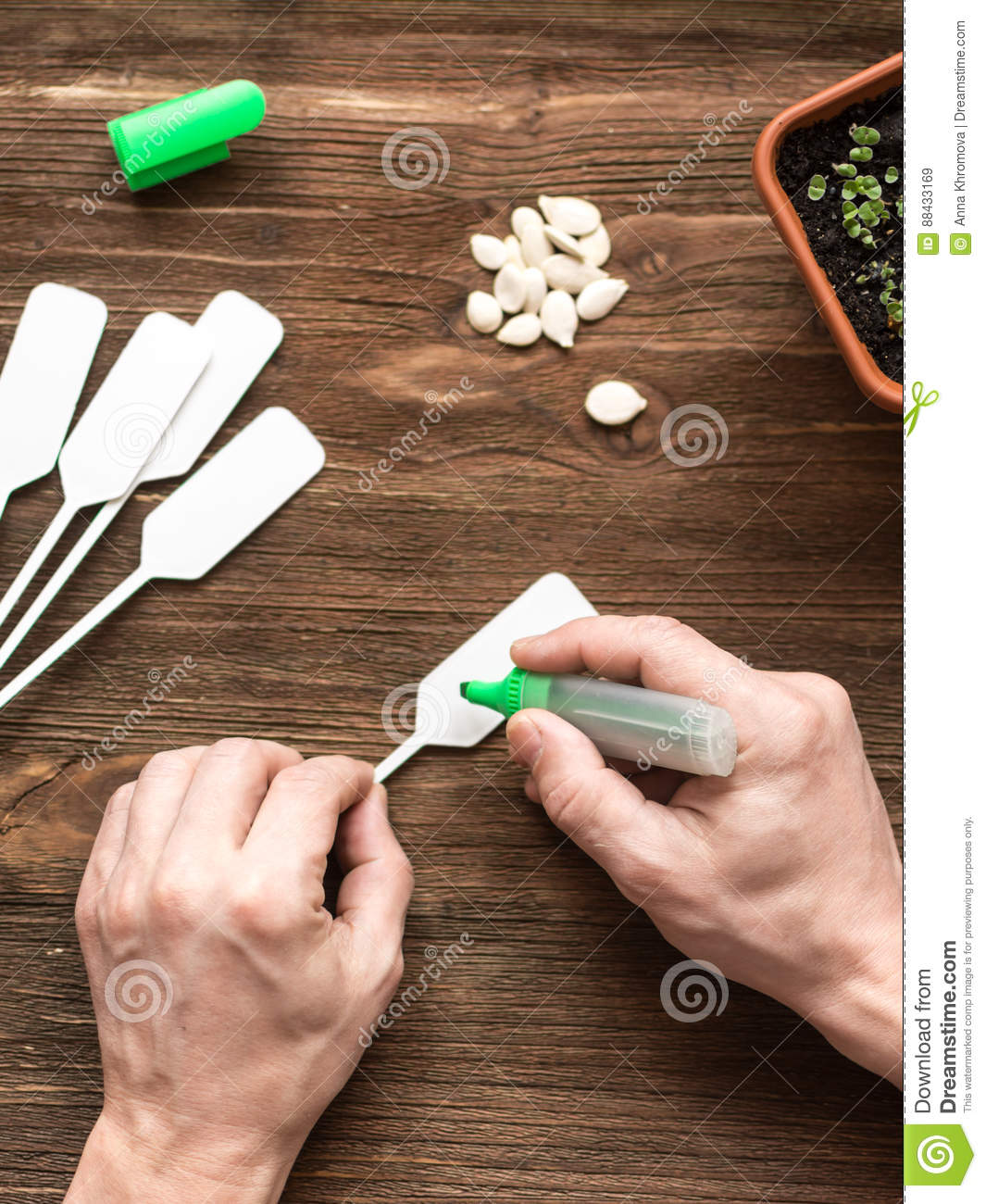 Flat Lay Scenery: Gardener Marks Plant Labels Stock Image - Image of ...