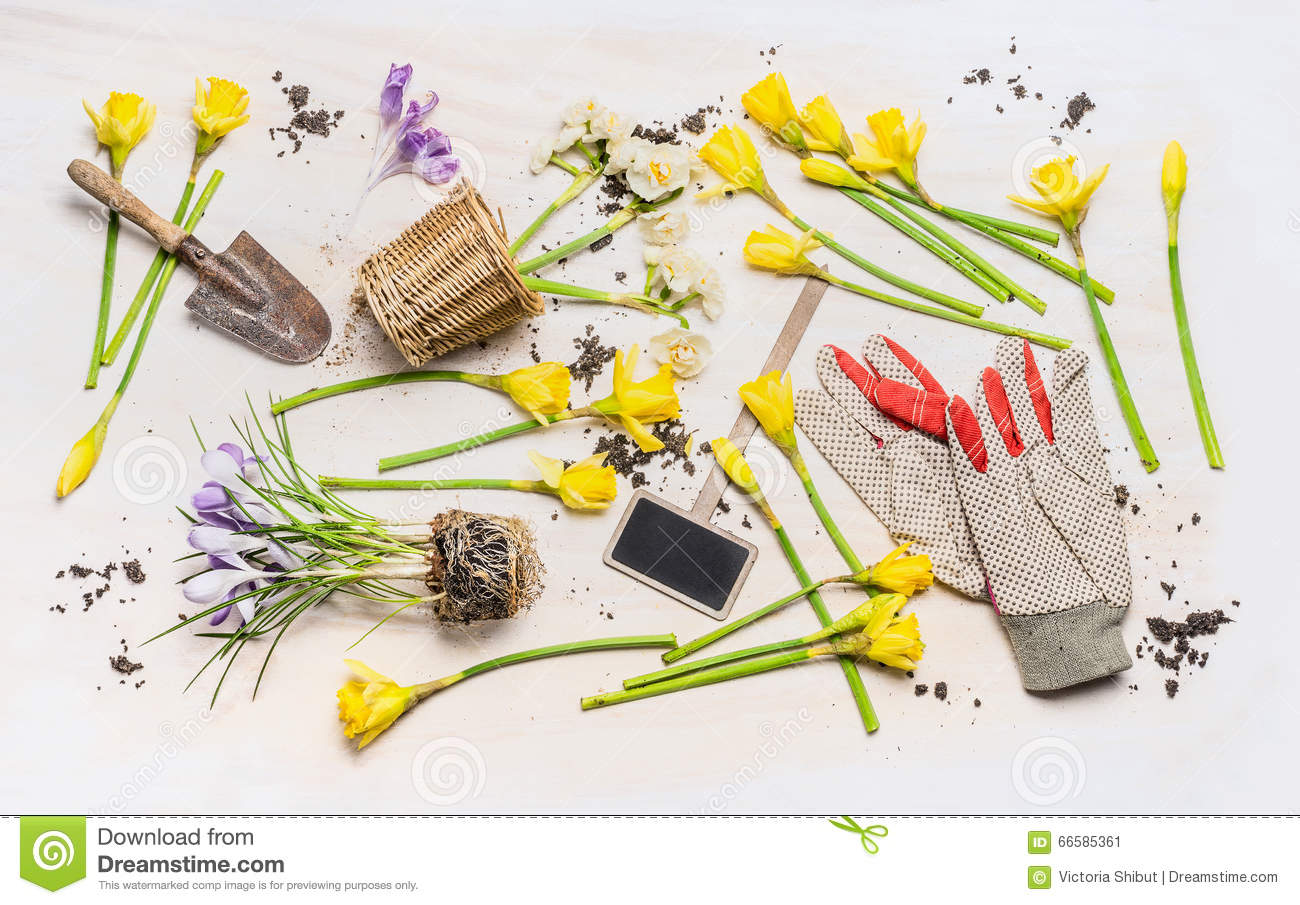 Flat lay with spring flowers various garden tools plant for Top gardening tools 2016