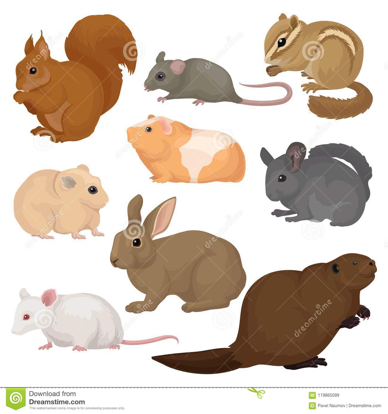 Flat Vector Set Of Various Rodents Small Forest And