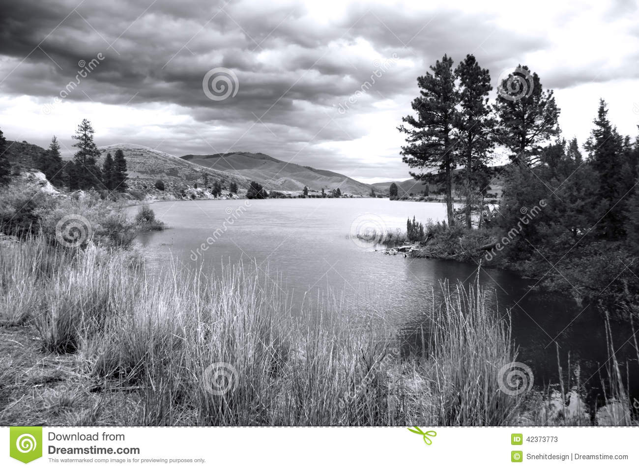 Flathead river montana stock image image of scenery 42373773