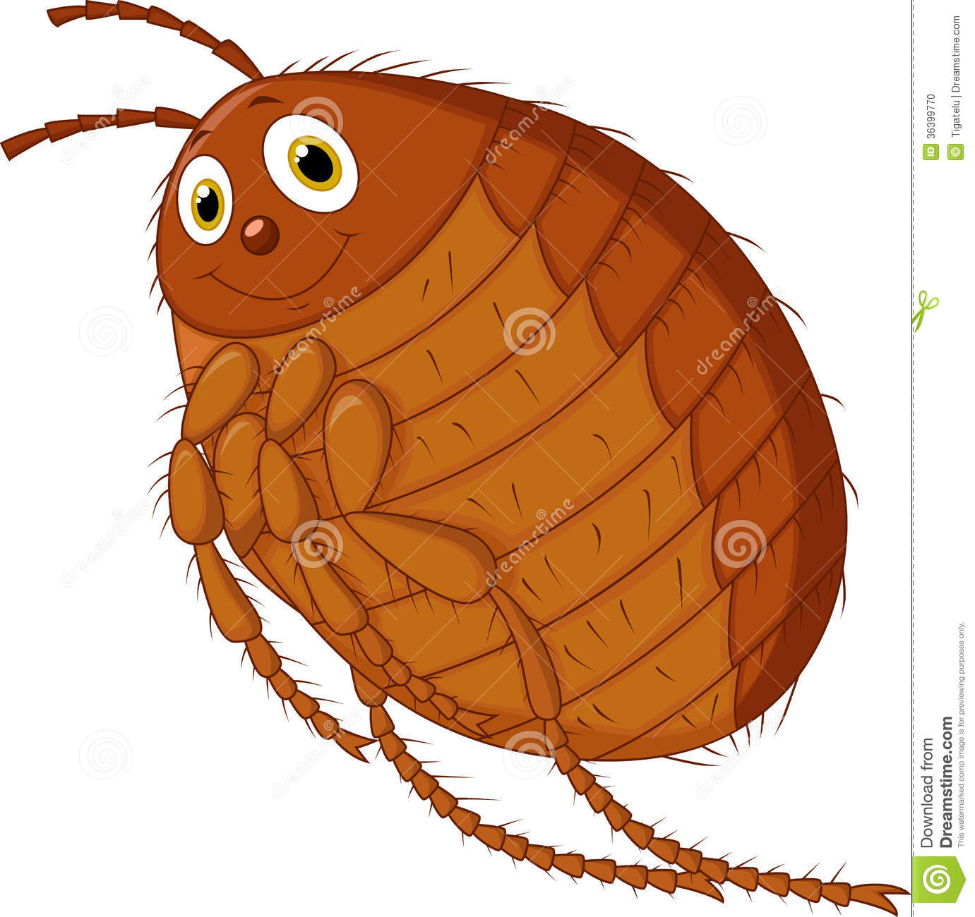 Flea Cartoon Stock Photo - Image: 36399770