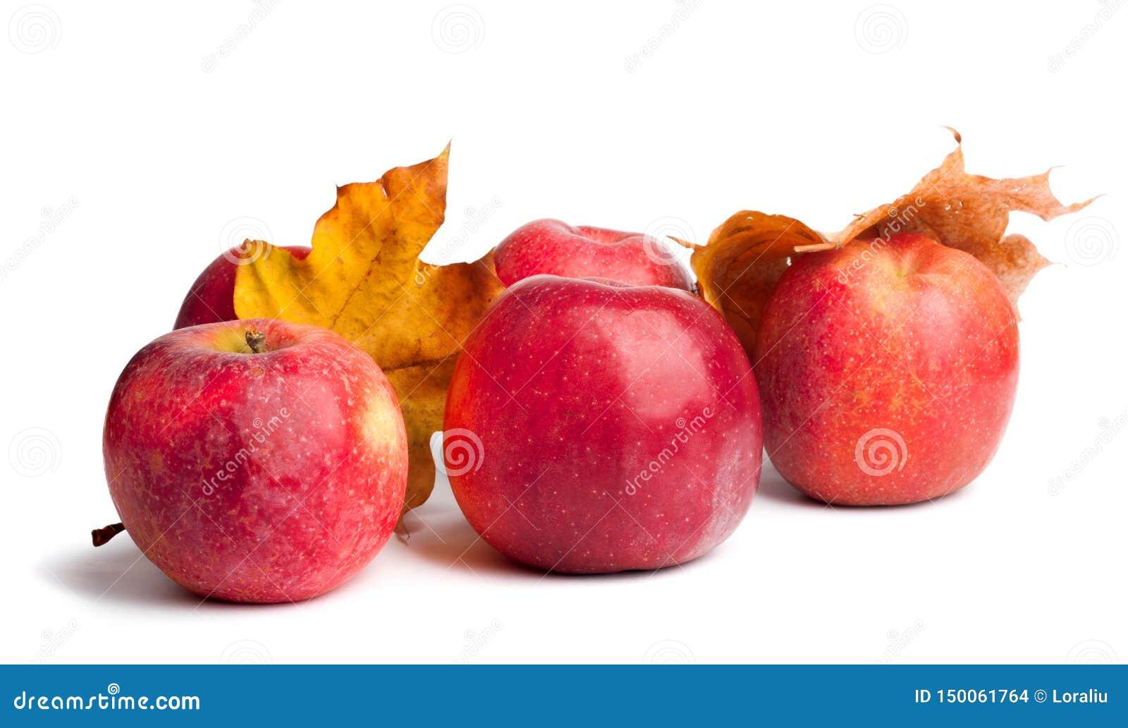 Flera mogna saftiga röda äpplen med höstsidor på isolerad bakgrund