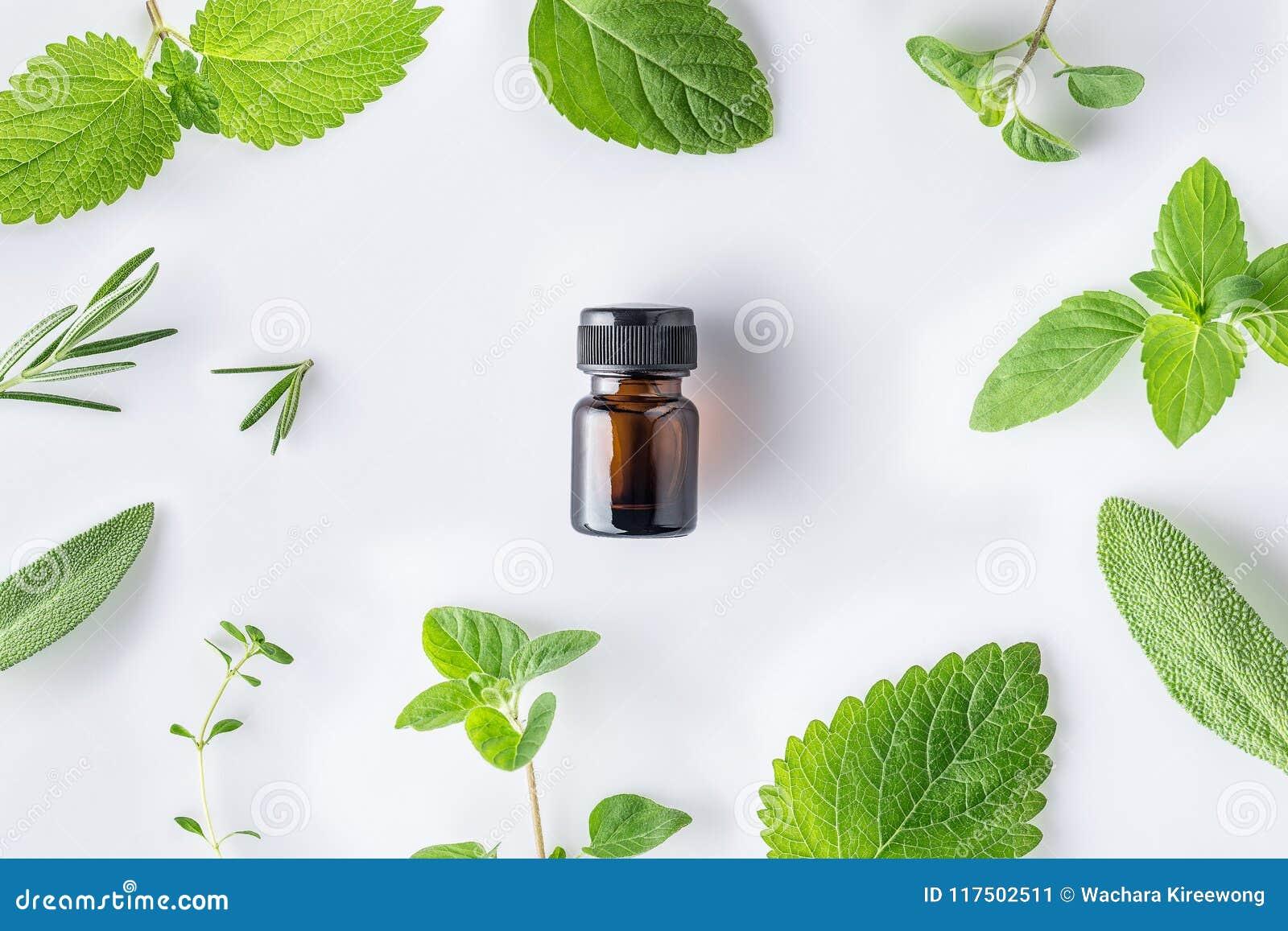 Fles etherische olie met verse kruidensalie, oregan rozemarijn,