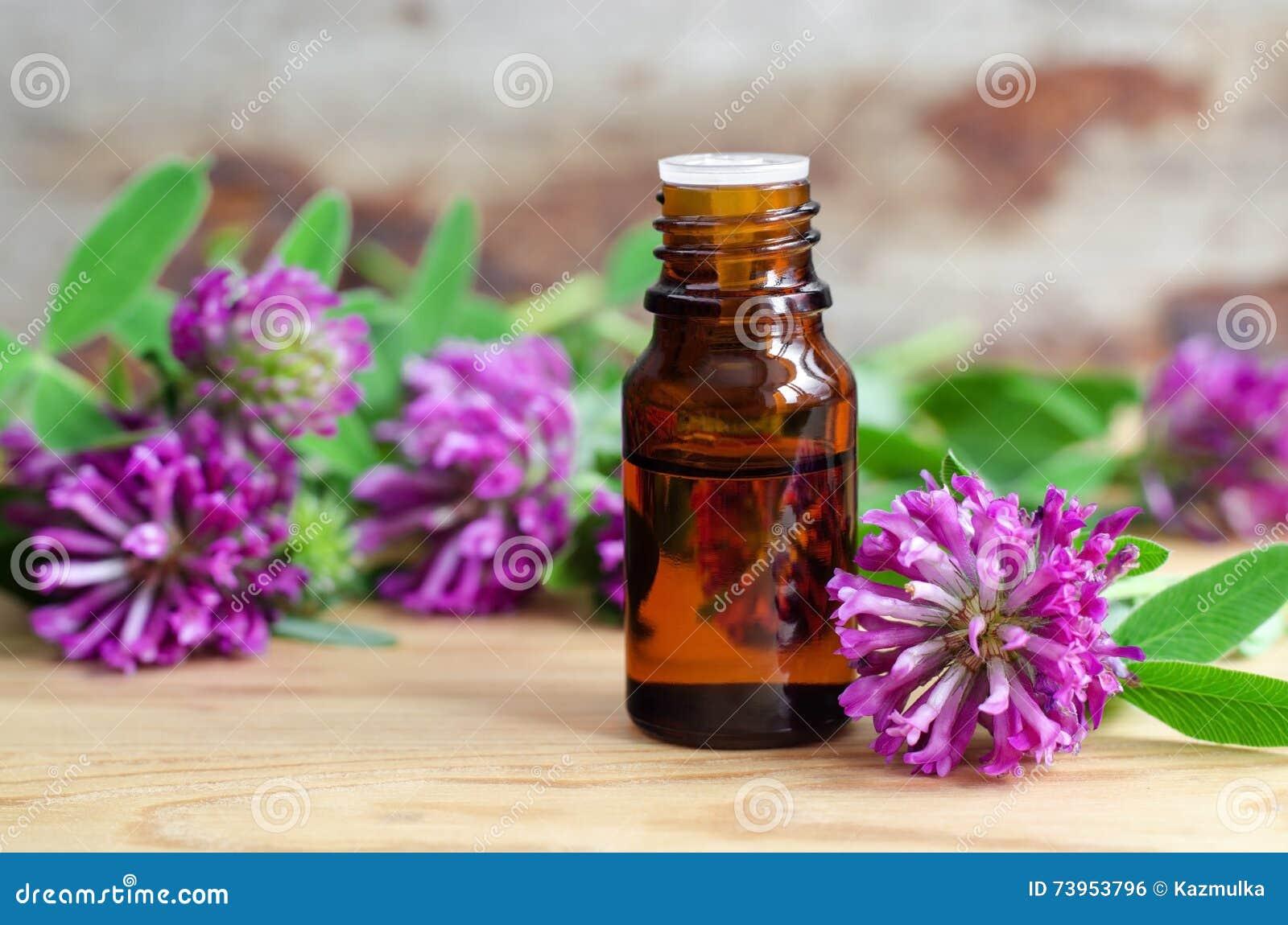 Fles van rode klaveruittreksel (tint, infusie, olie)