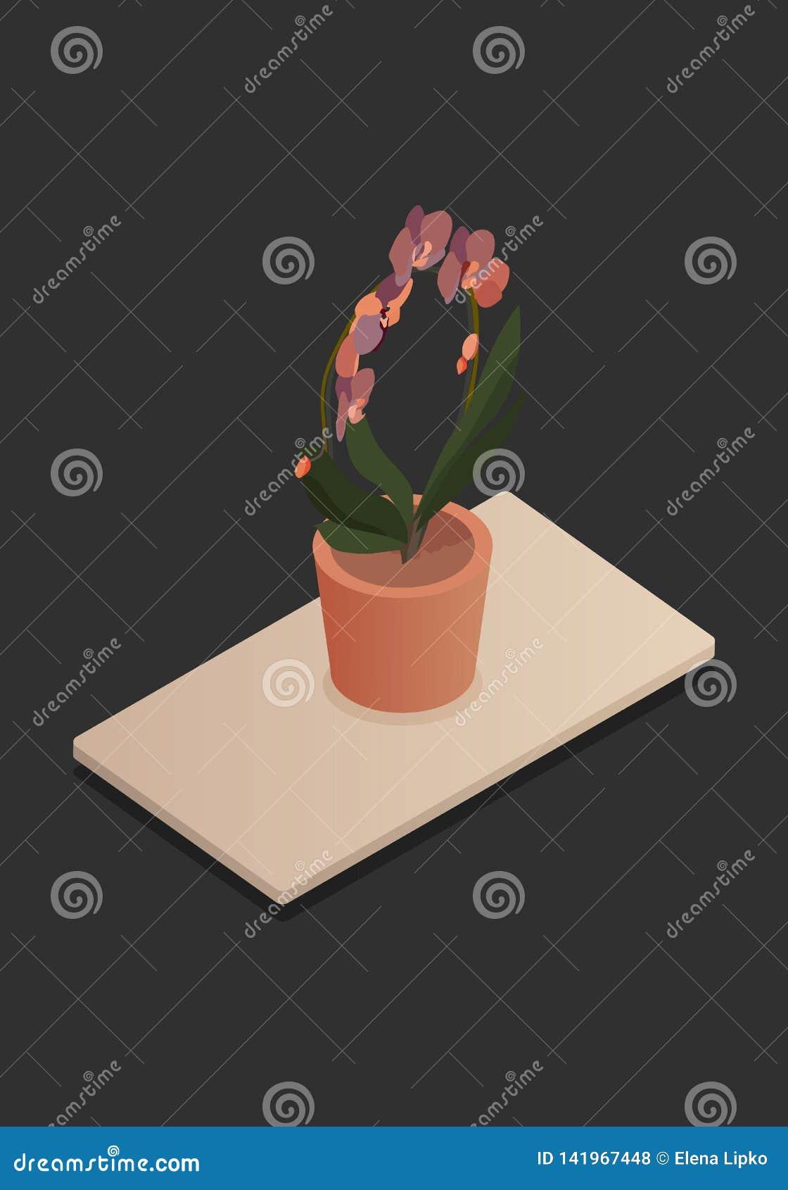 Fleur à la maison dans l illustration-vektorgrafik isométrique de vecteur de concept de vecteur de pot