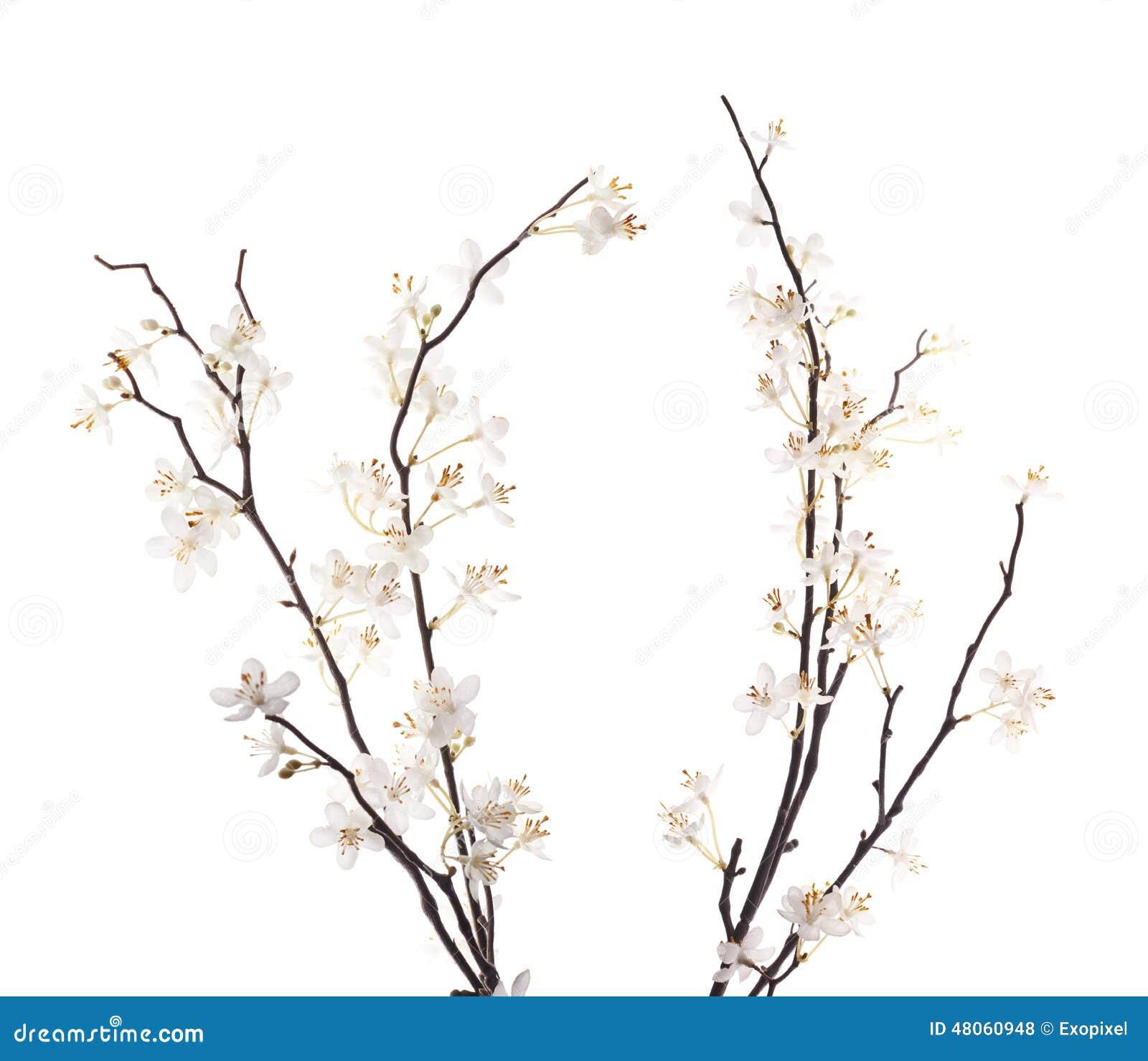 fleur blanche artificielle de sakura d 39 isolement photo stock image 48060948. Black Bedroom Furniture Sets. Home Design Ideas