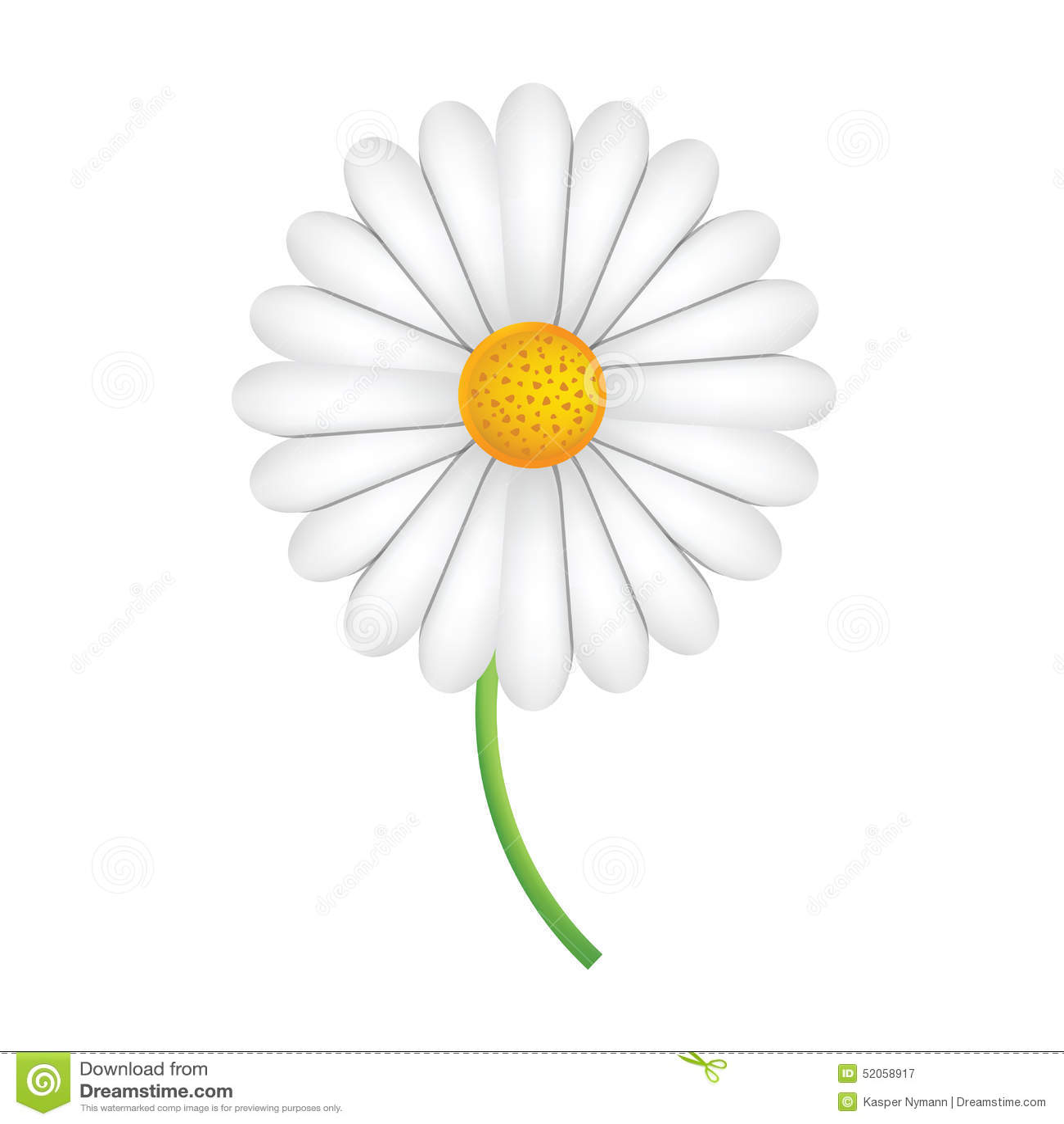 fleur blanche de marguerite des pr s sur une tige verte illustration stock image 52058917. Black Bedroom Furniture Sets. Home Design Ideas
