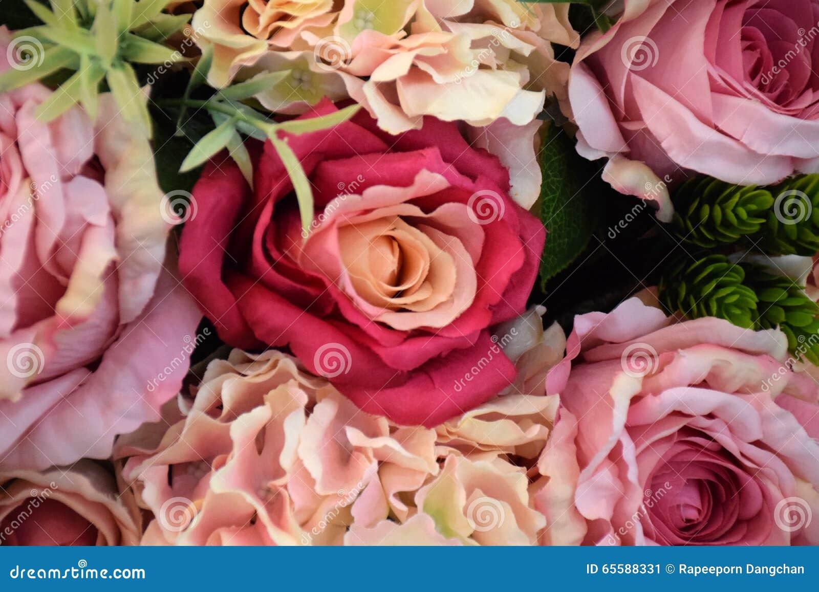 Fleur Coloree De Rose Dans Le Lieu De Reunion Image Stock Image Du