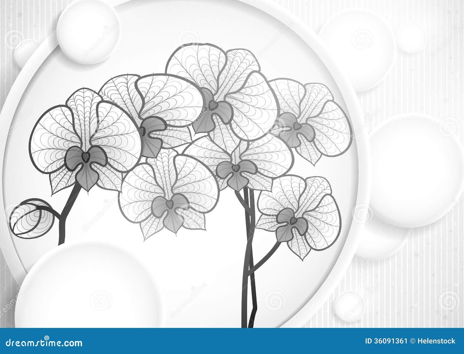 Fleur d 39 orchid e de dessin de main image stock image 36091361 - Dessin d orchidee ...