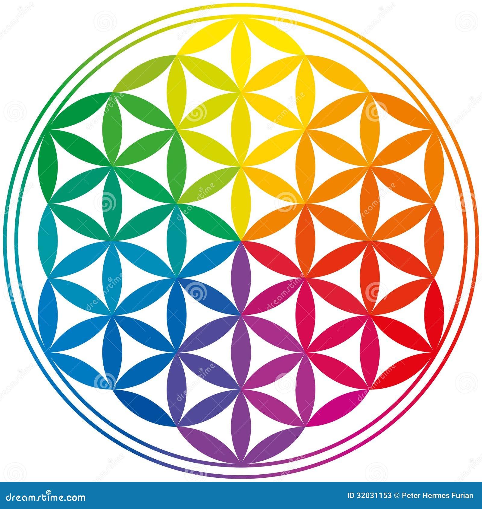 fleur de couleurs d 39 arc en ciel de la vie photos stock image 32031153. Black Bedroom Furniture Sets. Home Design Ideas