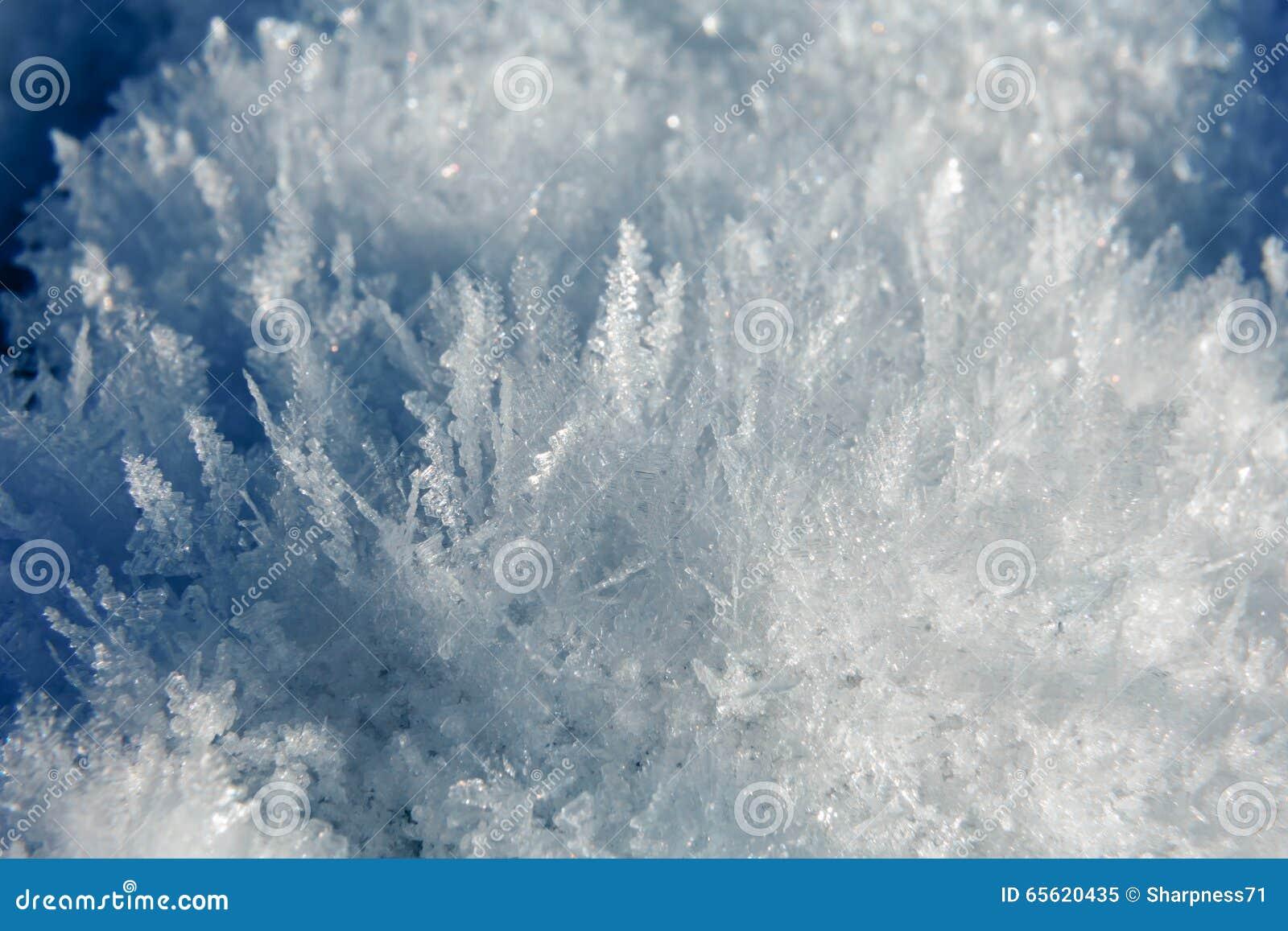 fleur de cristal de glace photo stock - image: 65620435