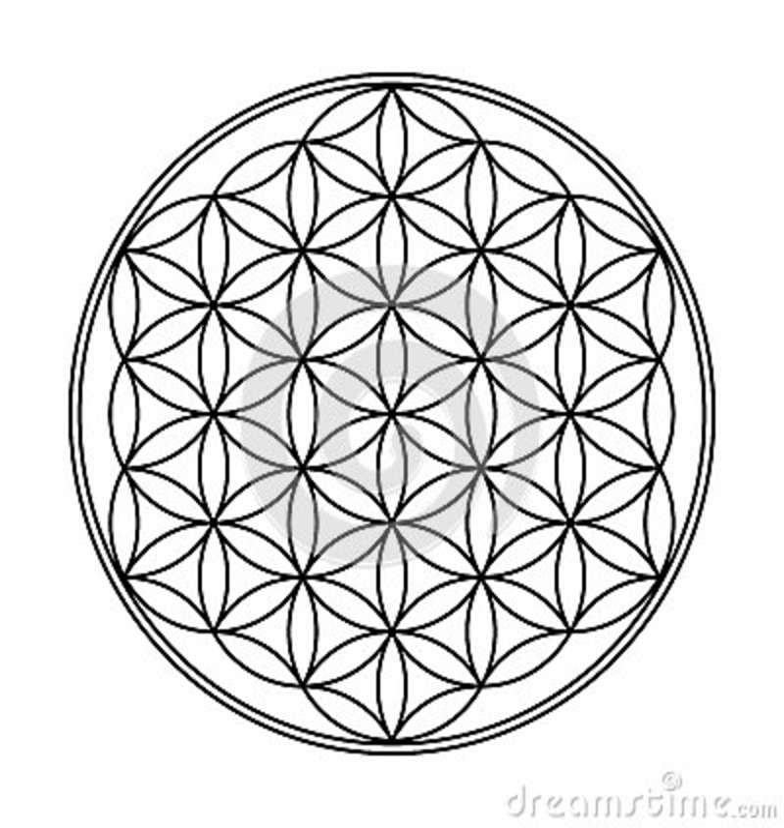 Fleur De Dessin Geometrique De La Vie Illustration Stock
