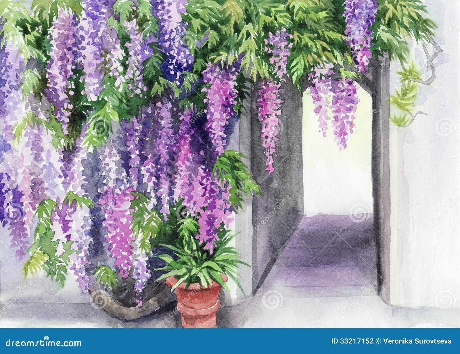 Fleur de glycine illustration stock. Illustration du bleu - 33217152