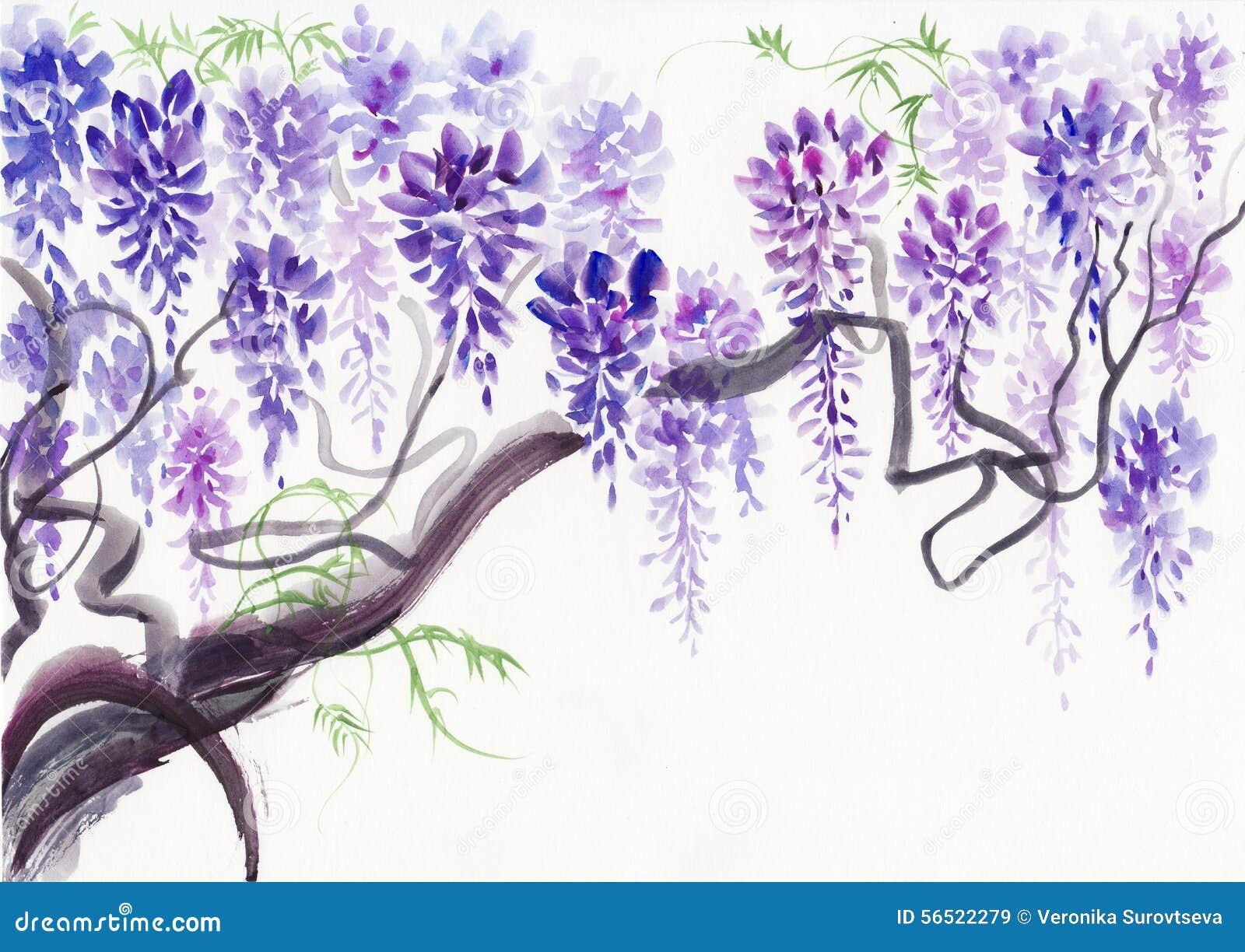 fleur de glycine illustration stock image 56522279. Black Bedroom Furniture Sets. Home Design Ideas