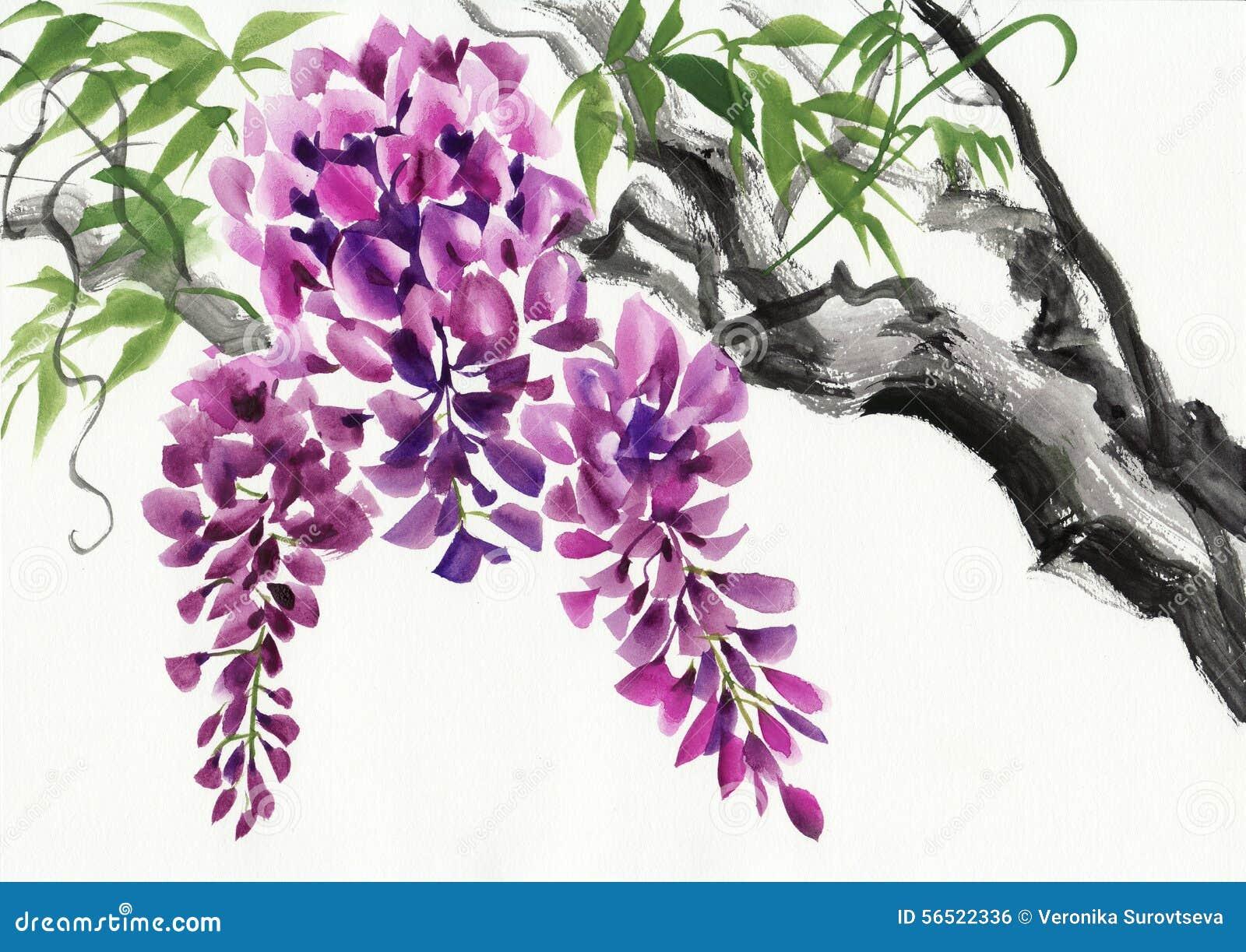 fleur de glycine illustration stock illustration du image 56522336. Black Bedroom Furniture Sets. Home Design Ideas