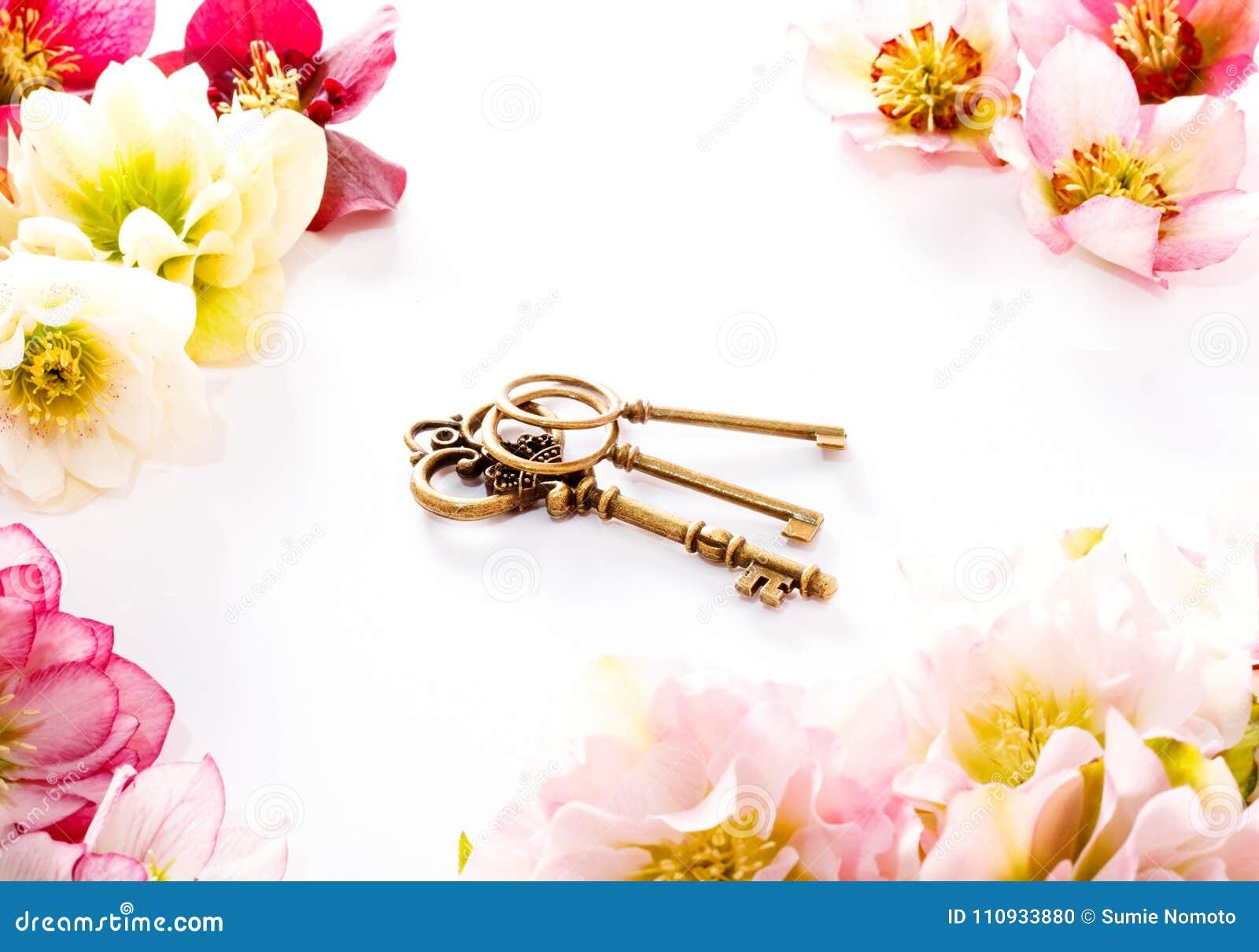 Fleur de Hellebore ou orientalis de Helleborus et clé antiqued sur le blanc