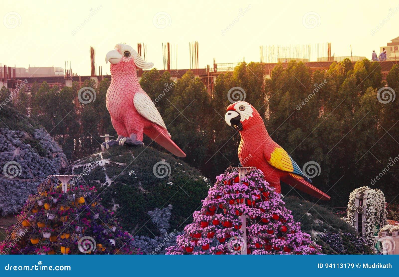 Fleur De Jardin De Miracle De Dubaï Image stock éditorial - Image du ...