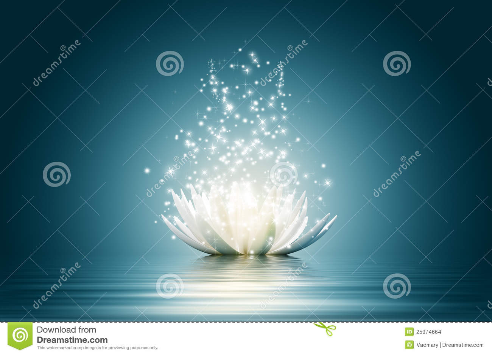 Fleur de lotus