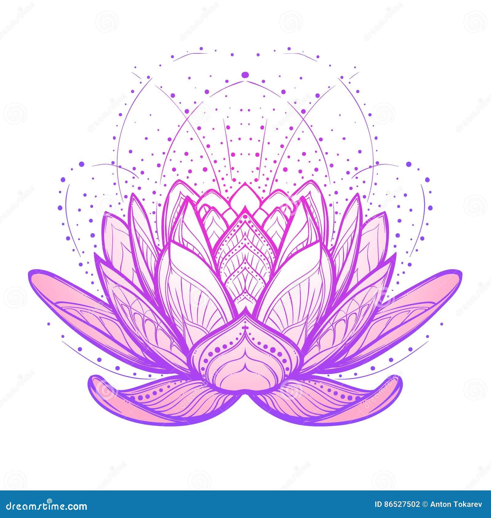 Fleur De Lotus Dessin Lineaire Stylise Complexe Sur Le Fond Blanc