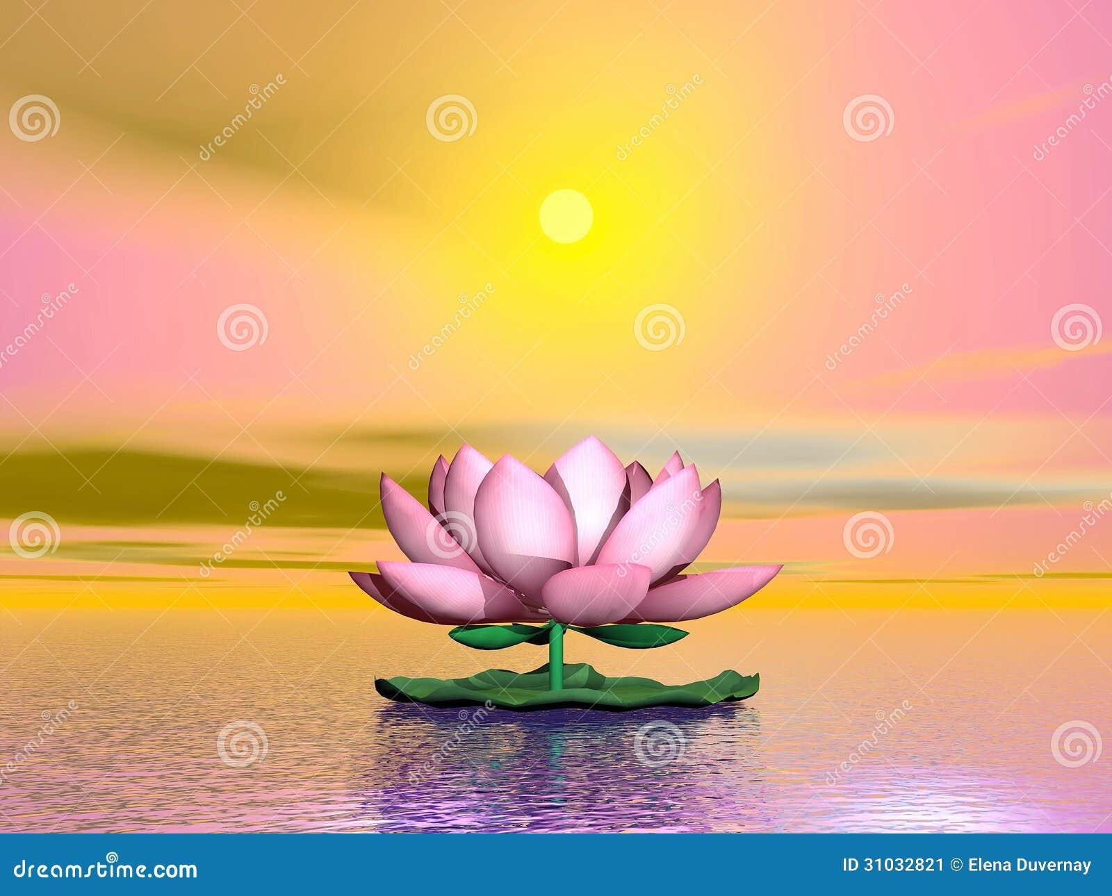 Fleur de lotus par coucher du soleil 3d rendent illustration stock image 31032821 - Fleur du soleil ...