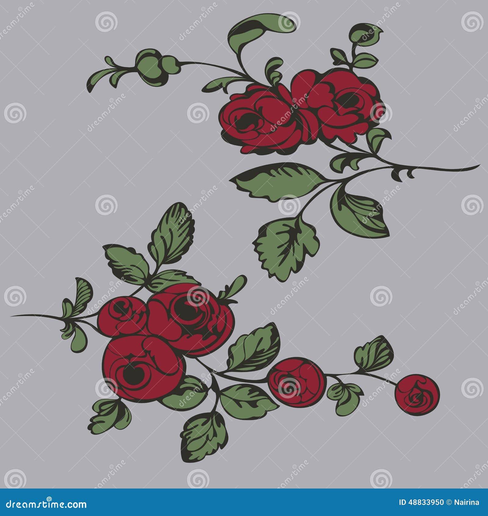 Fleur De Modèle De Dessin Plan Rapproché De Peinture Illustration
