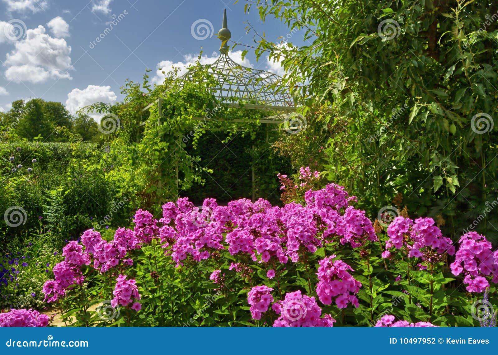 Fleur de phlox dans le jardin anglais photo stock image for Fleurs dans le jardin