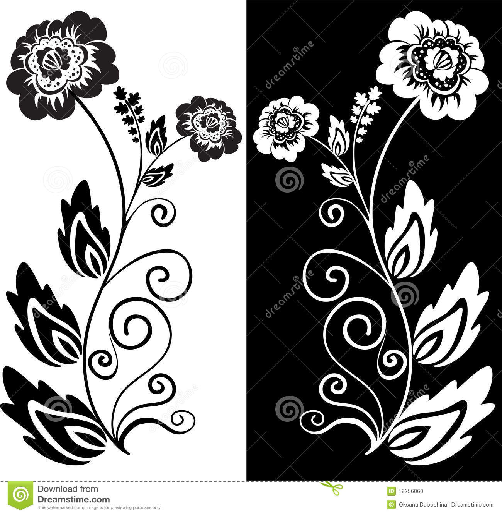 Fleur noire et blanche